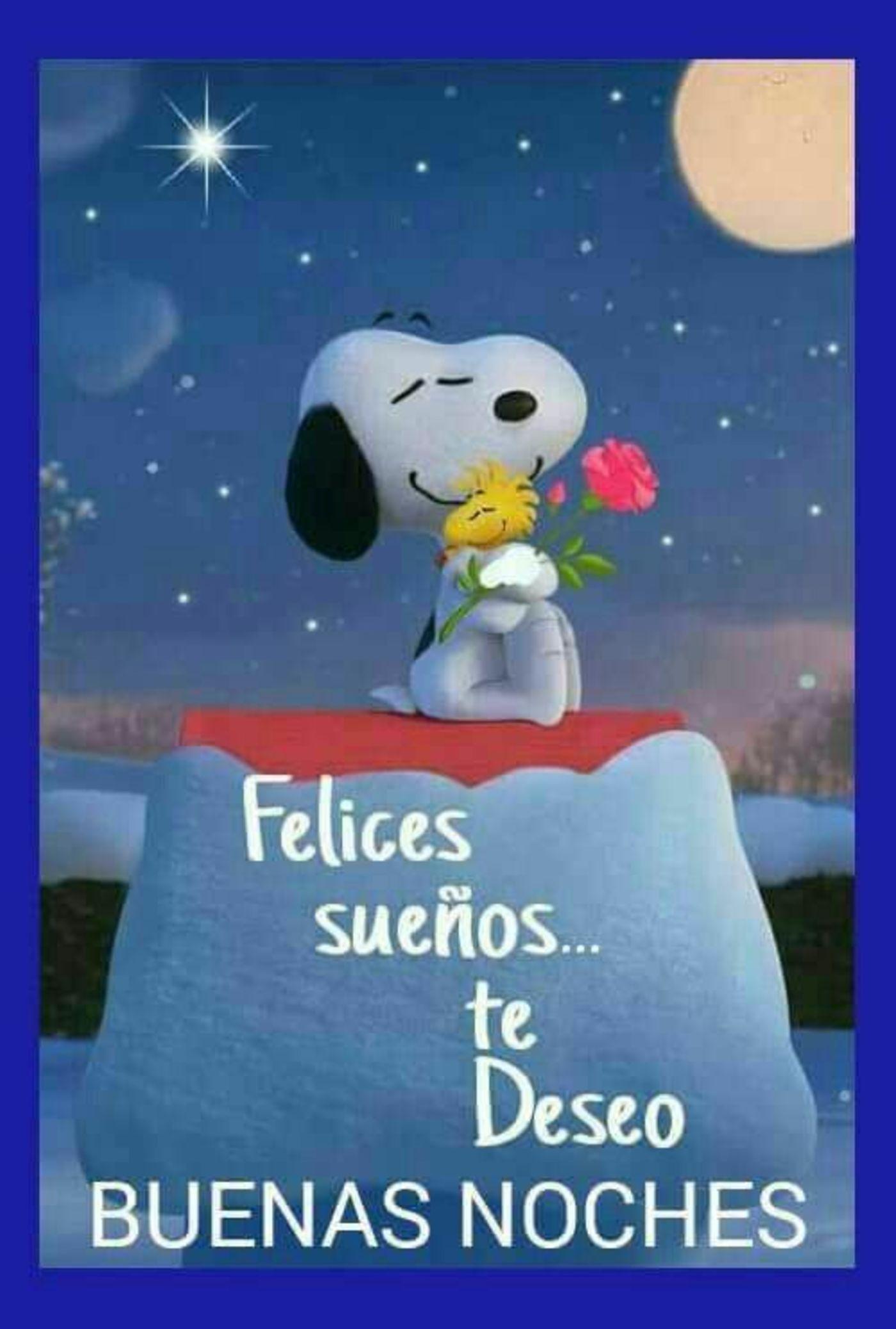 felices sueños...te deseo buenas noches