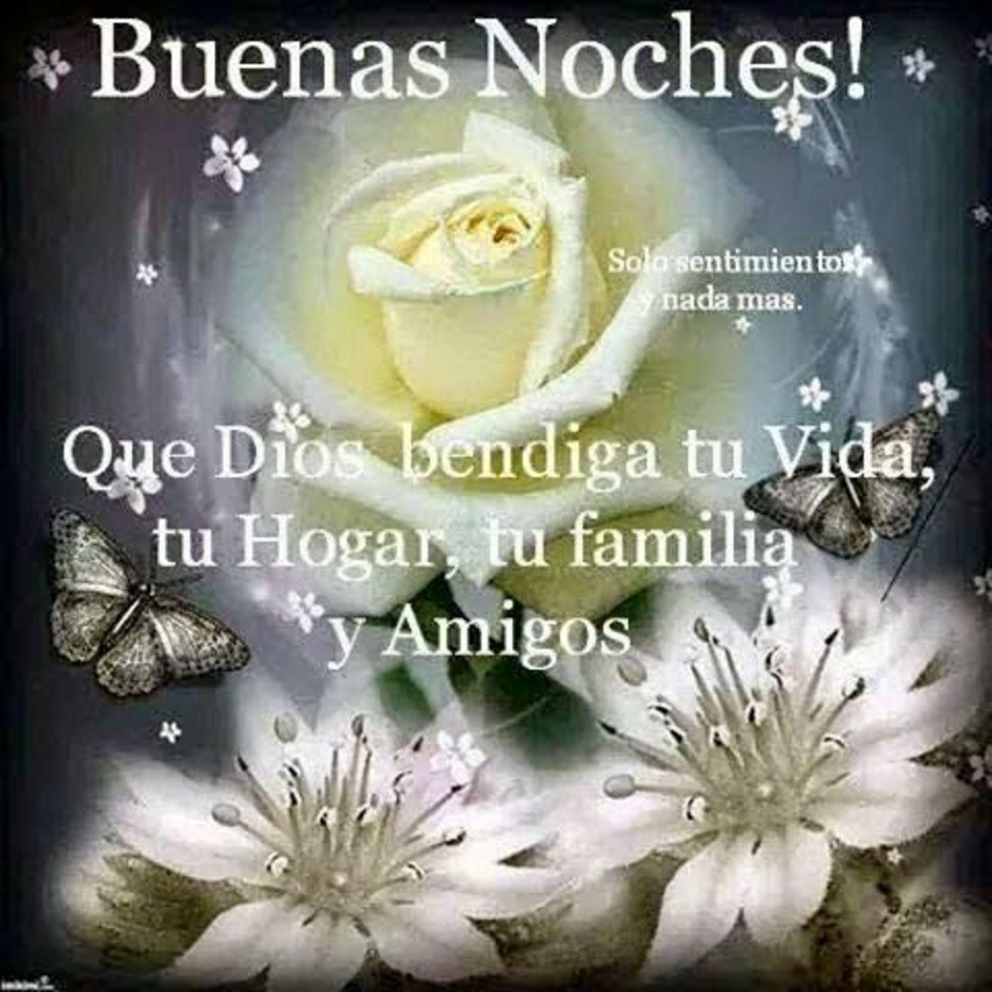 Buenas noches! Que Dios bendiga tu vida, tu hogar, tu familia y amigos