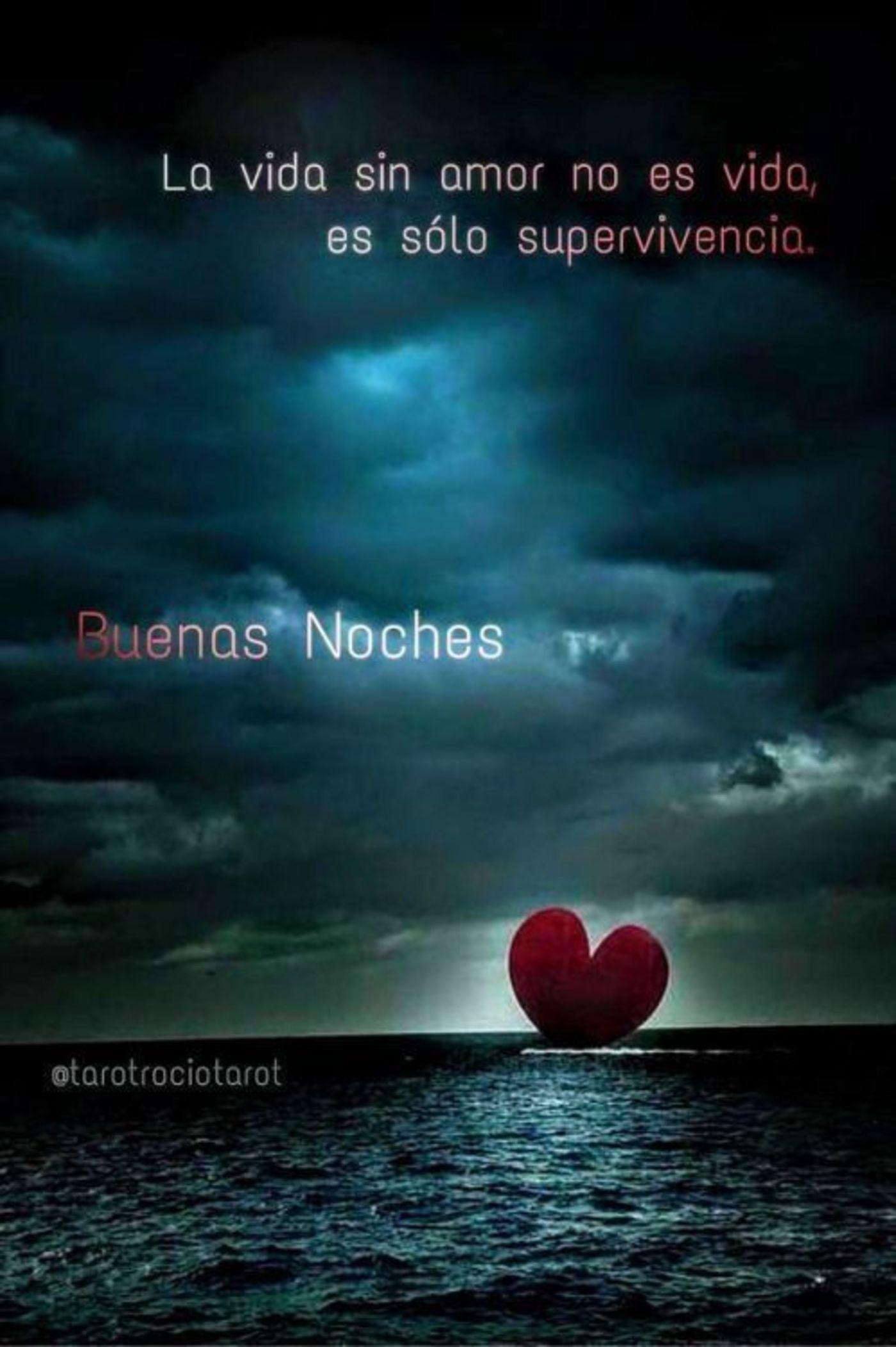 La vida sin amor no es vida, es sólo supervivencia. Buenas noches