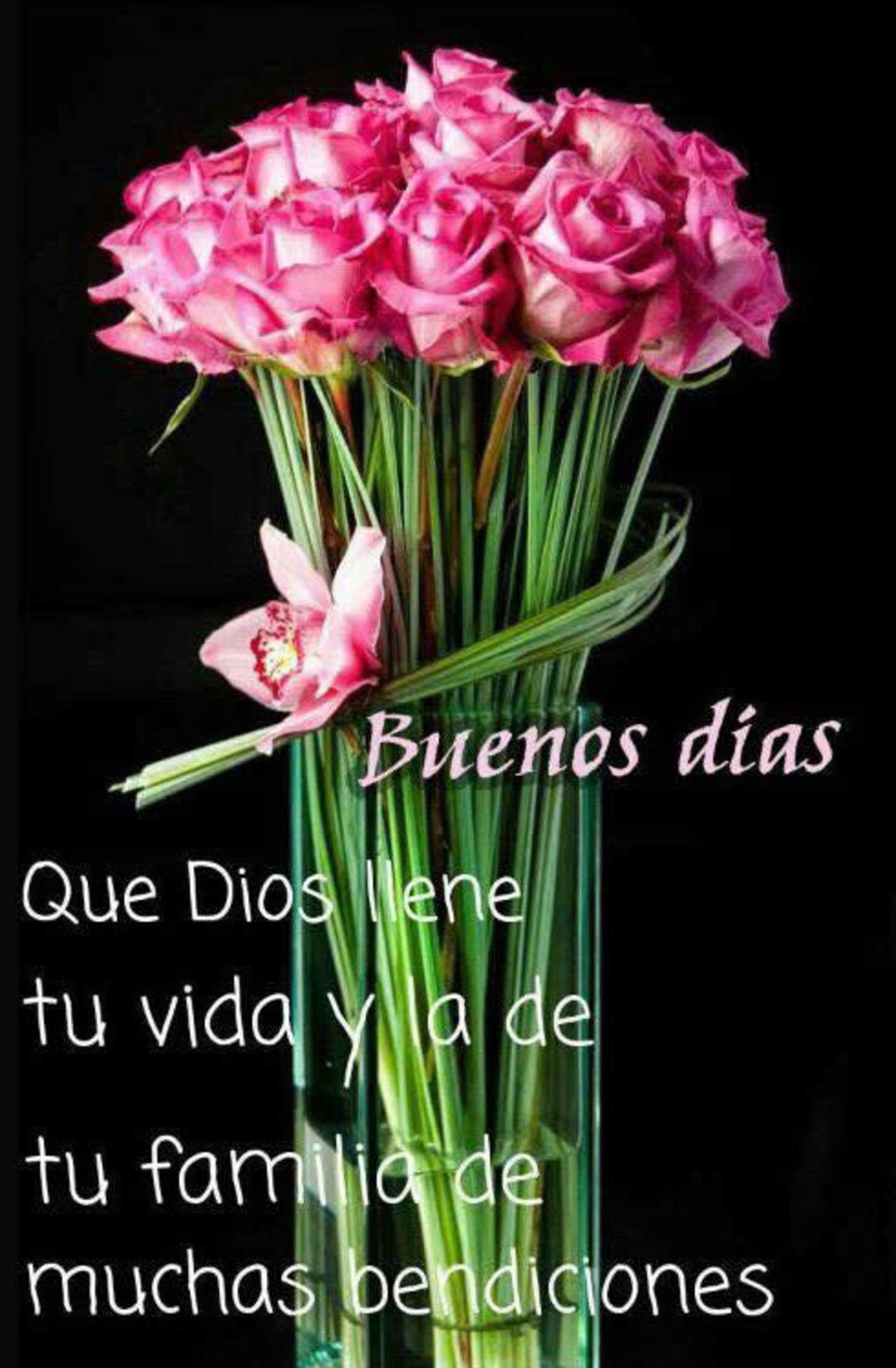 Buenos días! Que Dios llene tu vida y la de tu familia de muchas bendiciones