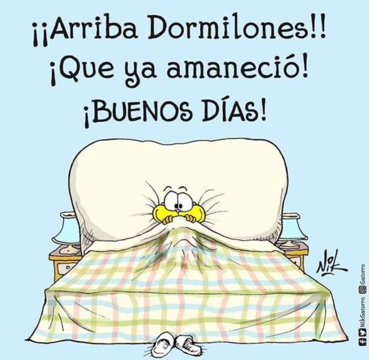 Arriba dormilones! Que ya amanecio! Buenos dias