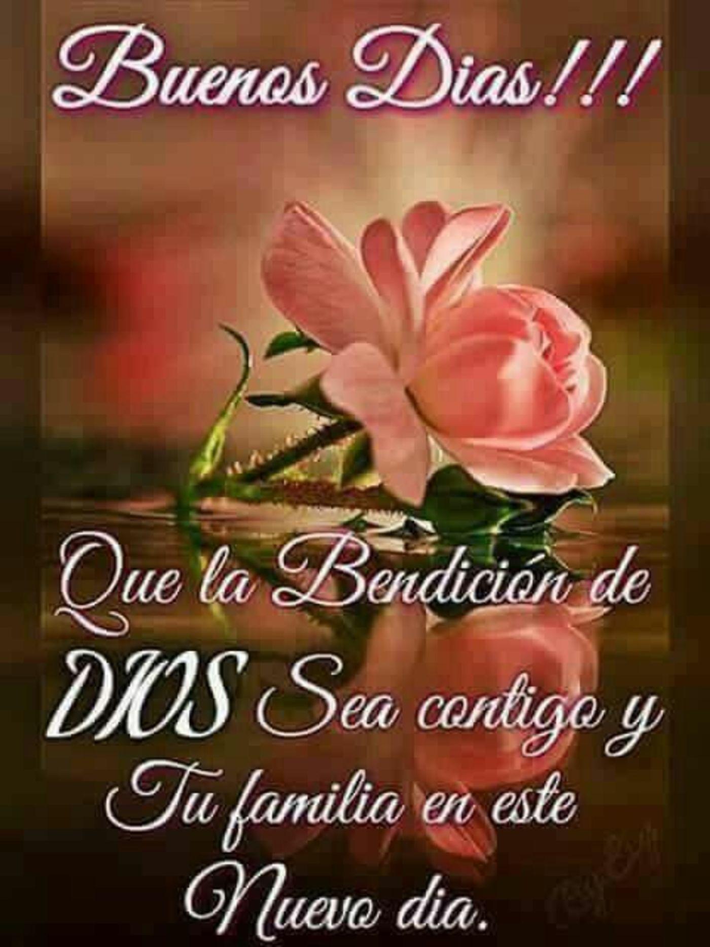 Que la bendición de Dios sea contigo y tu familia en este nuevo día