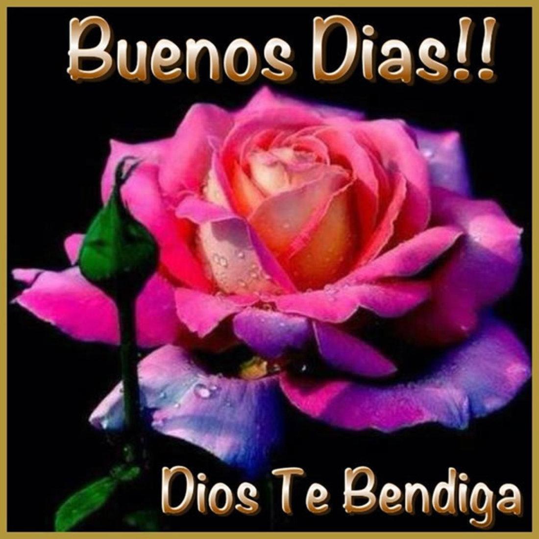 Buenos Días, Dios te bendiga