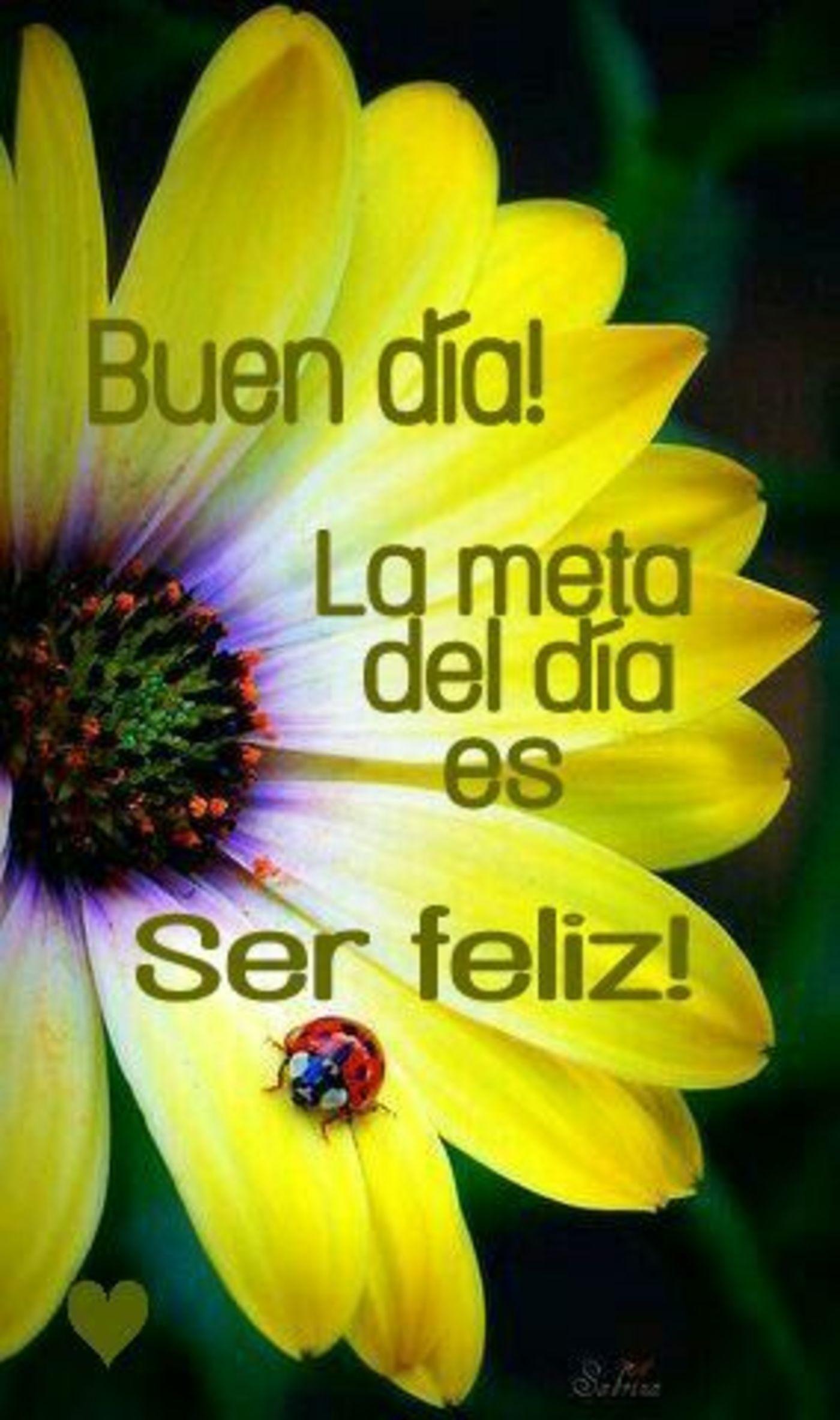 Buen día! la meta del día es ser feliz