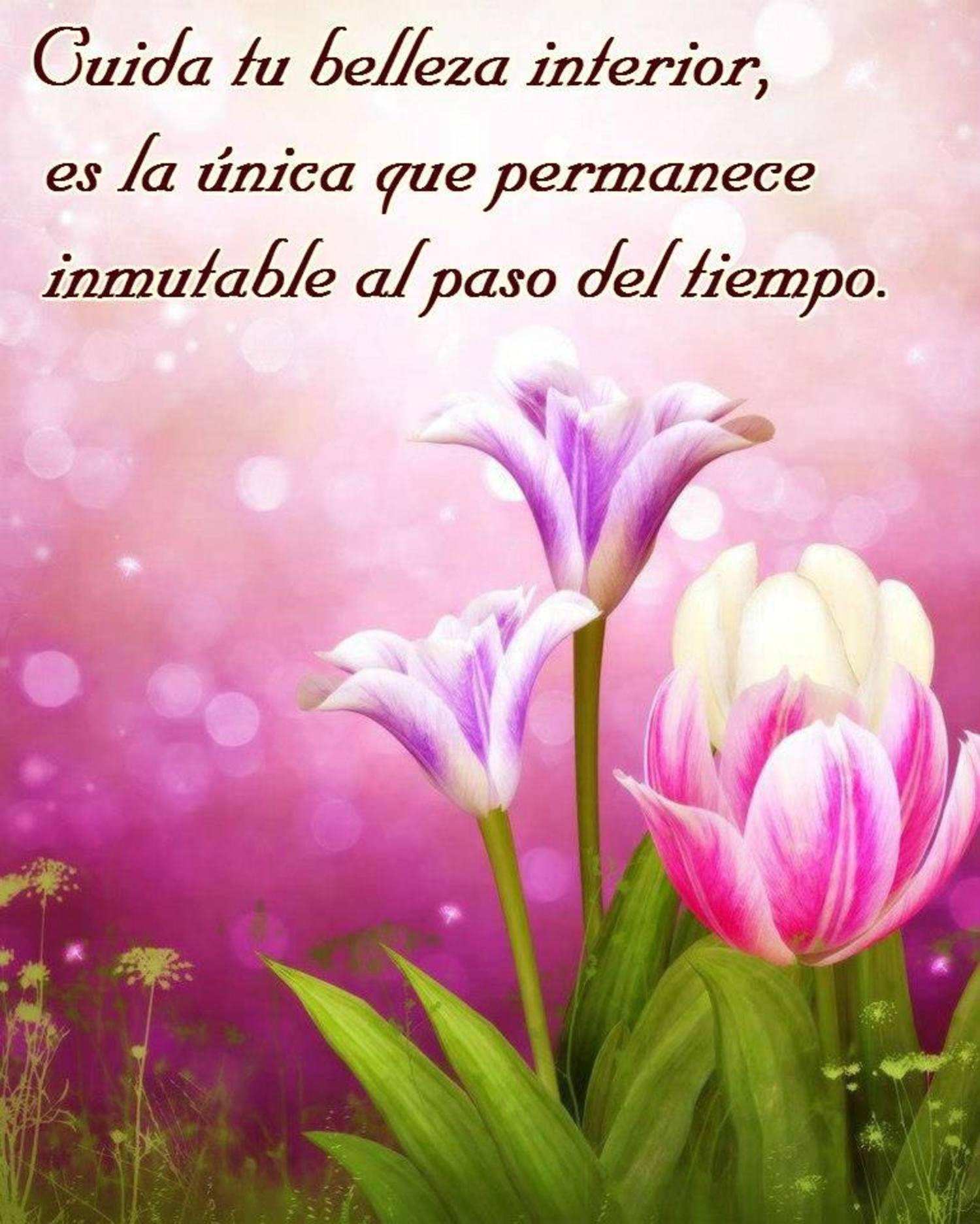 Cuida tu belleza interior, es la unica que permanece, inmutable al paso del tiempo.
