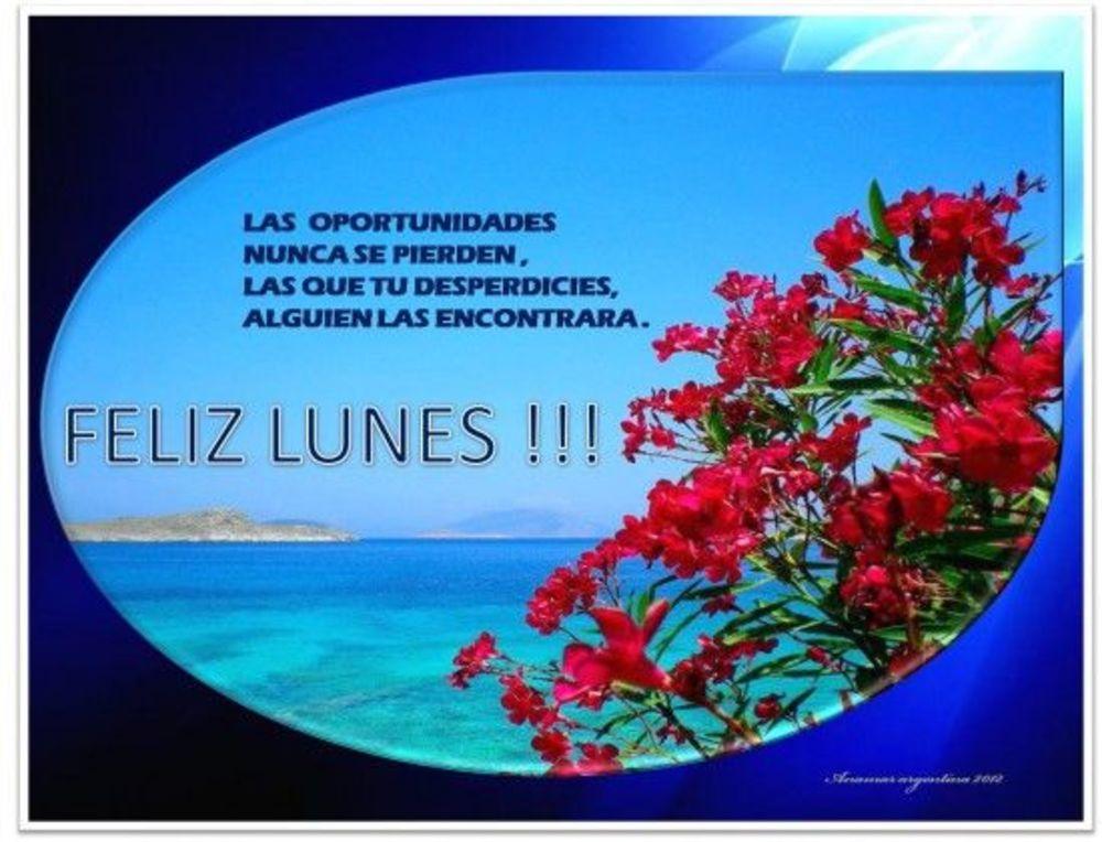 Las oportunidades nunca se pierden, las que tu desperdicies, alguien las encontrara. Feliz Lunes!!!