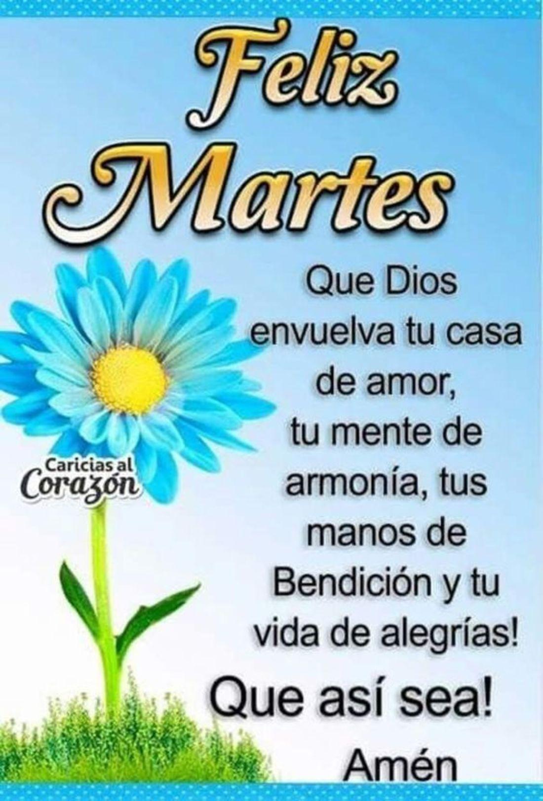 Feliz Martes que Dios envuelva tu casa de amor, tu mente de armonia, tus manos de bendicion y tu vida de alegrias! Que asi sea! amen