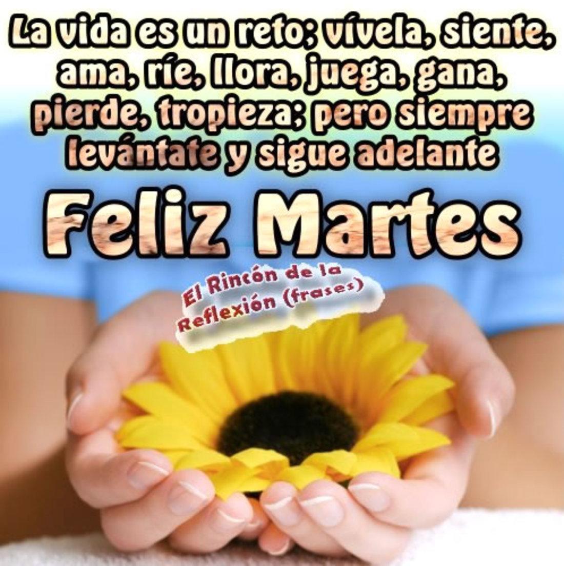 La vida es un reto: vivela, siente, ama, llora, juega, gana, pierde, tropieza, pero siempre levantate y sigue adelante! Feliz martes
