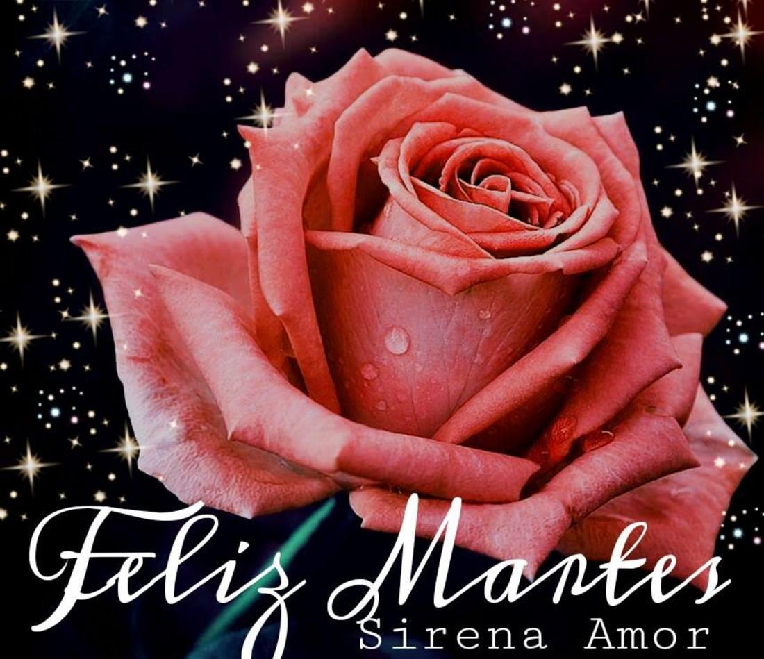 Feliz Martes hermosas imagenes