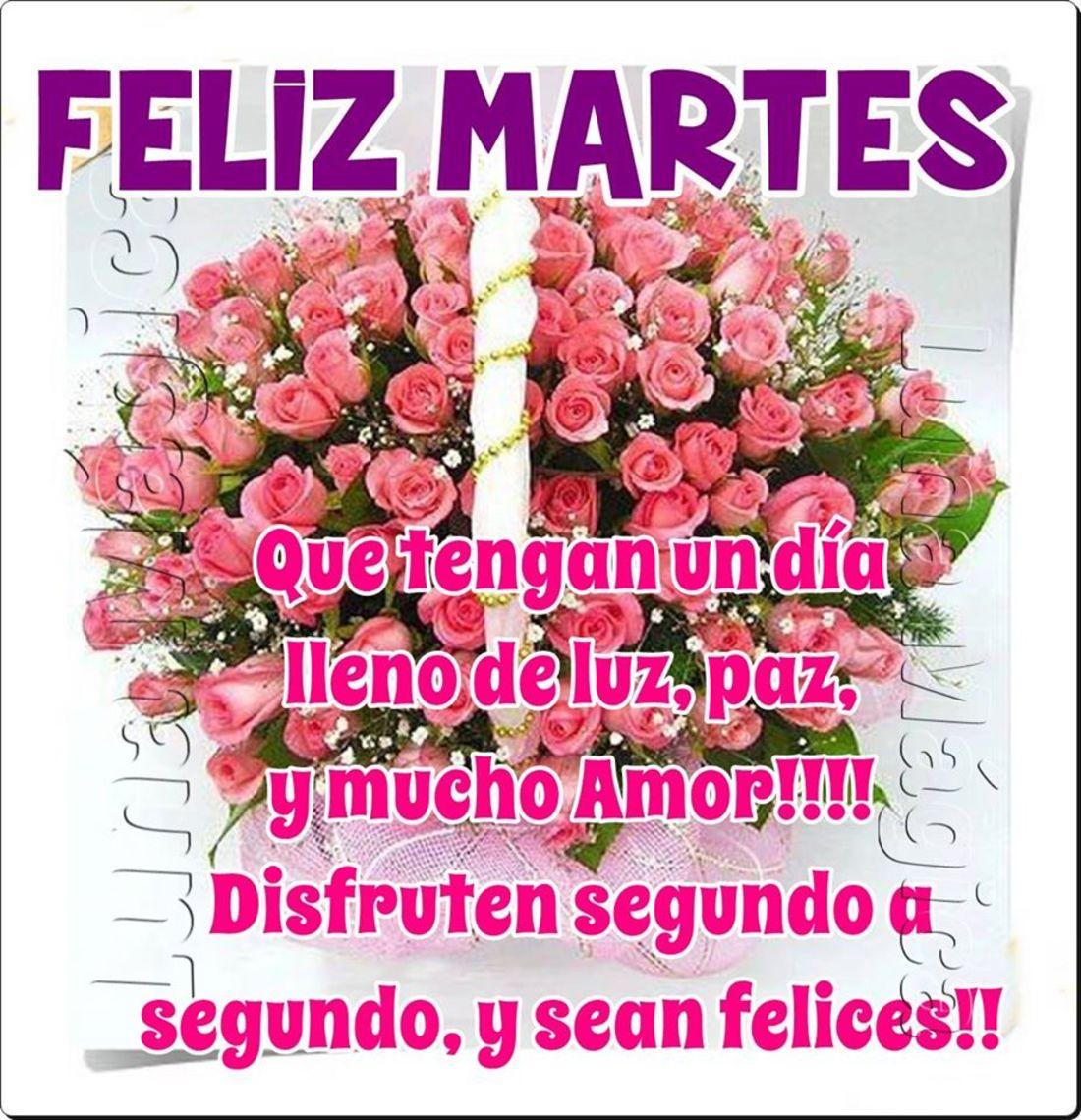 Feliz Martes que tengan día lleno de luz, paz, y mucho amor!!! Disfruten segundo a segundo, y sean felices!!