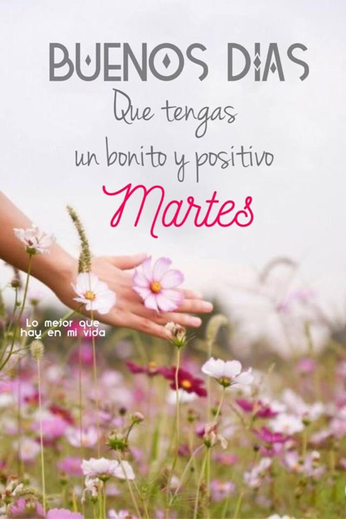 Buenos días que tengas un bonito y positivo martes