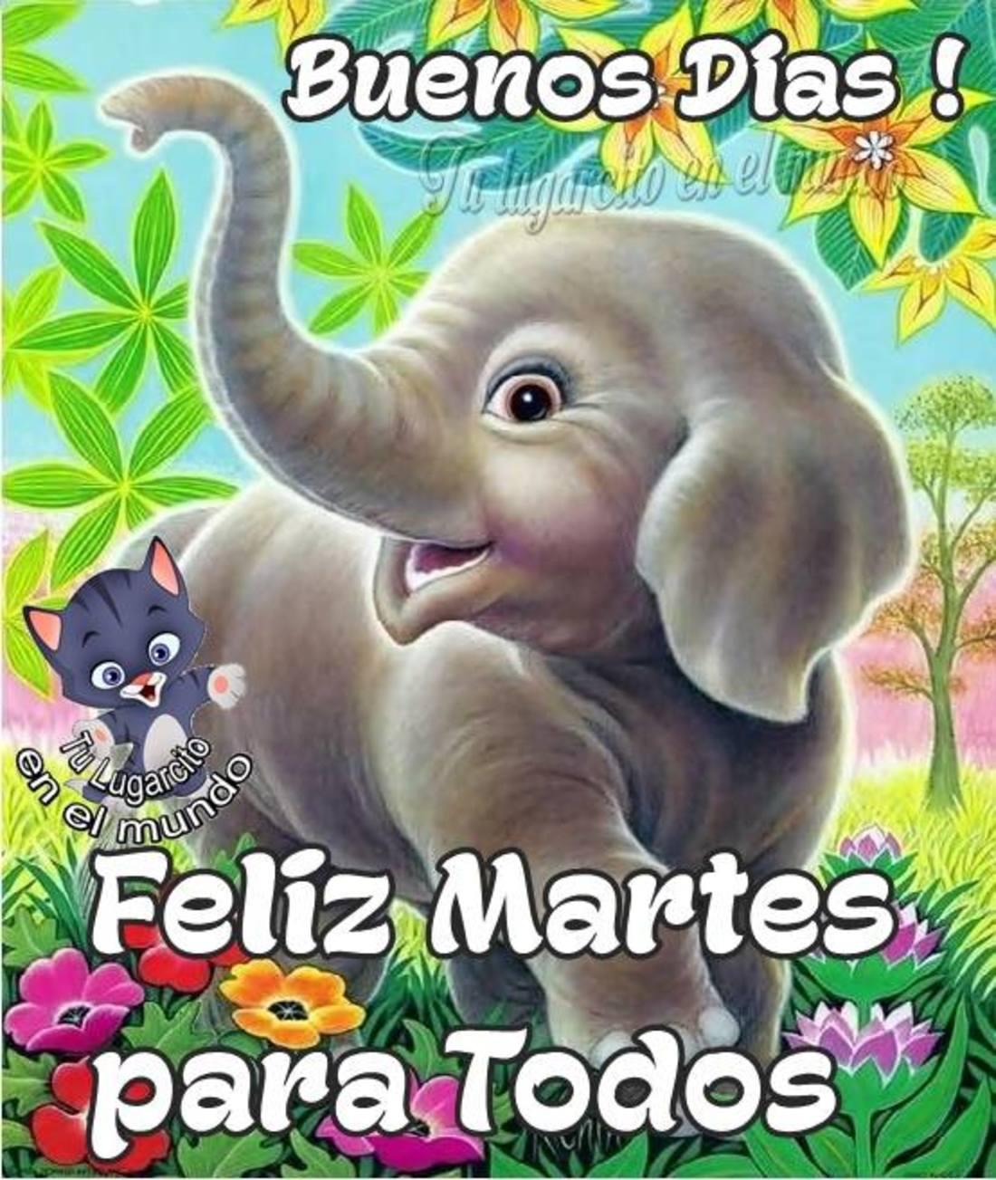 Buenos días feliz martes para todos