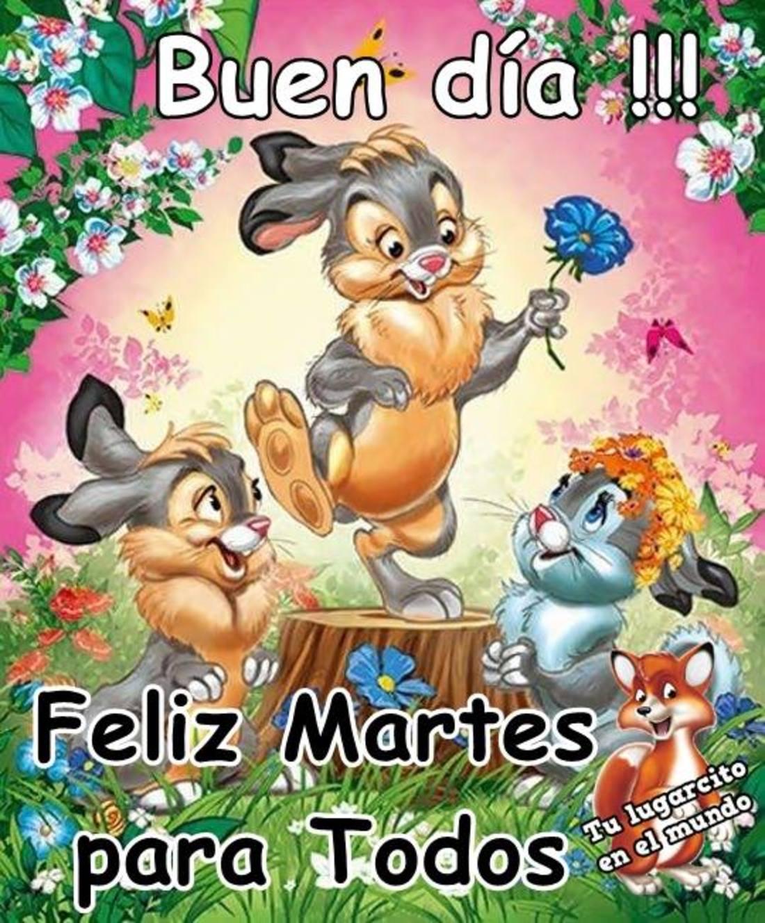 Buen día feliz martes para todos
