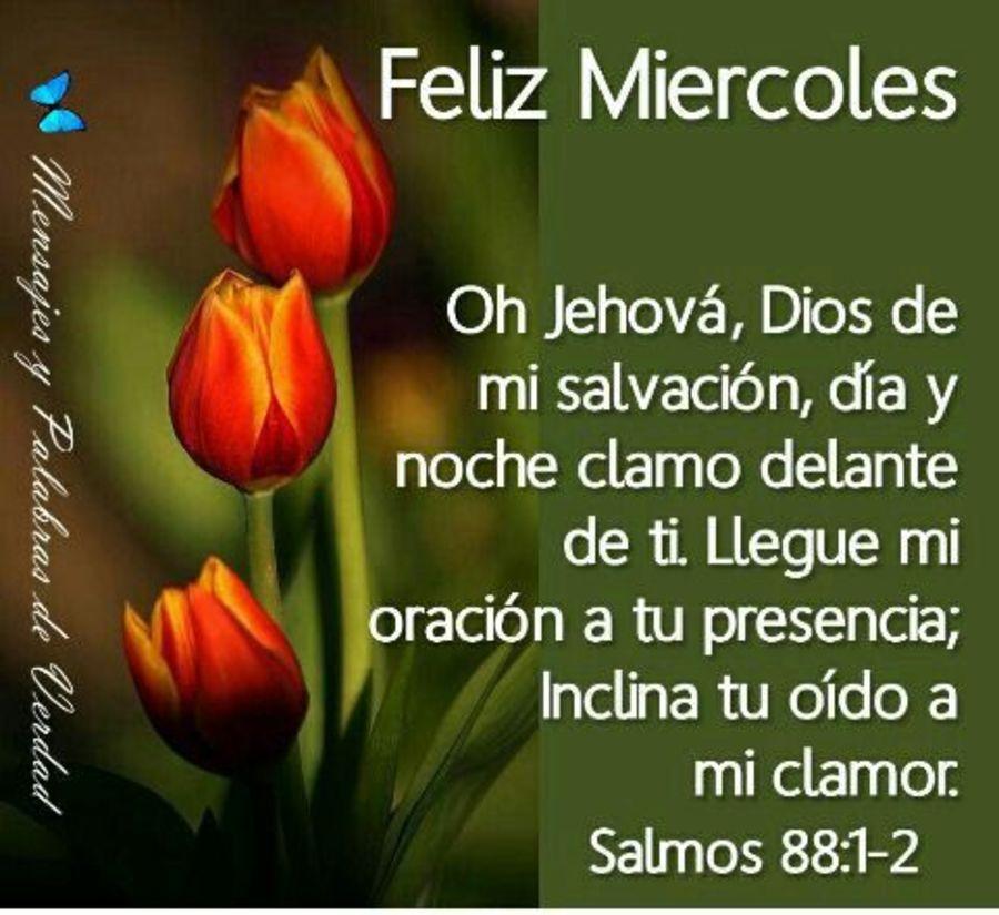 Feliz Miéecoles con Dios