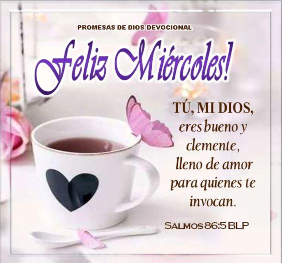 Feliz miércoles tu, mi Dios, eres bueno y clemente, lleno de amor para quienes te invocan