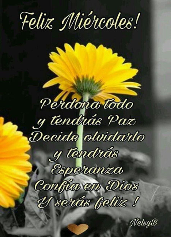 Feliz miércoles! Perdona todo y tendrás paz decide olvidarlo y tendrás esperanza confía en Dios y serás feliz!