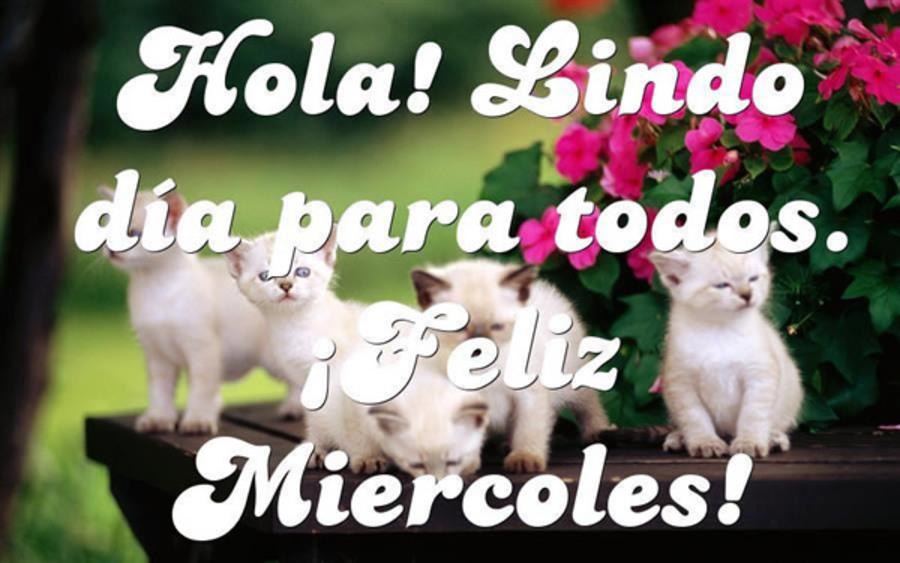 Hola! Lindo dia para todos. Feliz miércoles