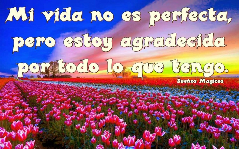 Mi vida no es perfecta, pero estoy agradecida por todo lo que tengo