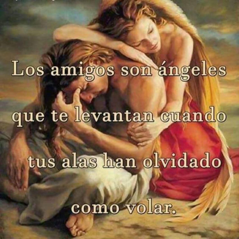 Los amigos son ángeles que te levantan cuando tus alas han olvidado como volar