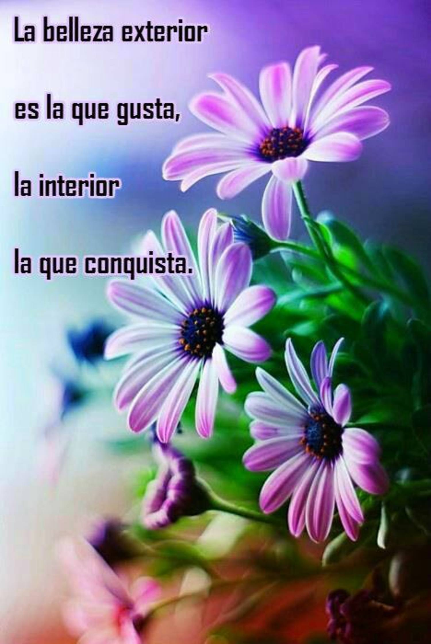 La belleza exterior es la que gusta, la interior la que conquista