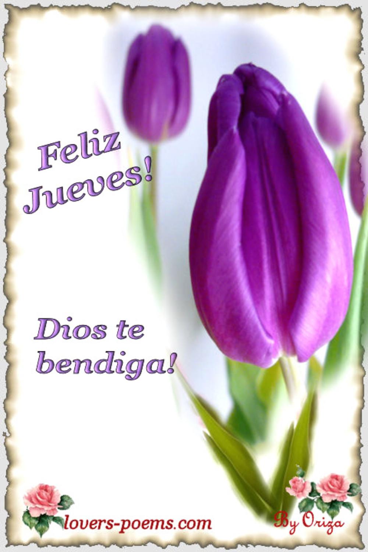 Feliz Jueves Dios te bendiga