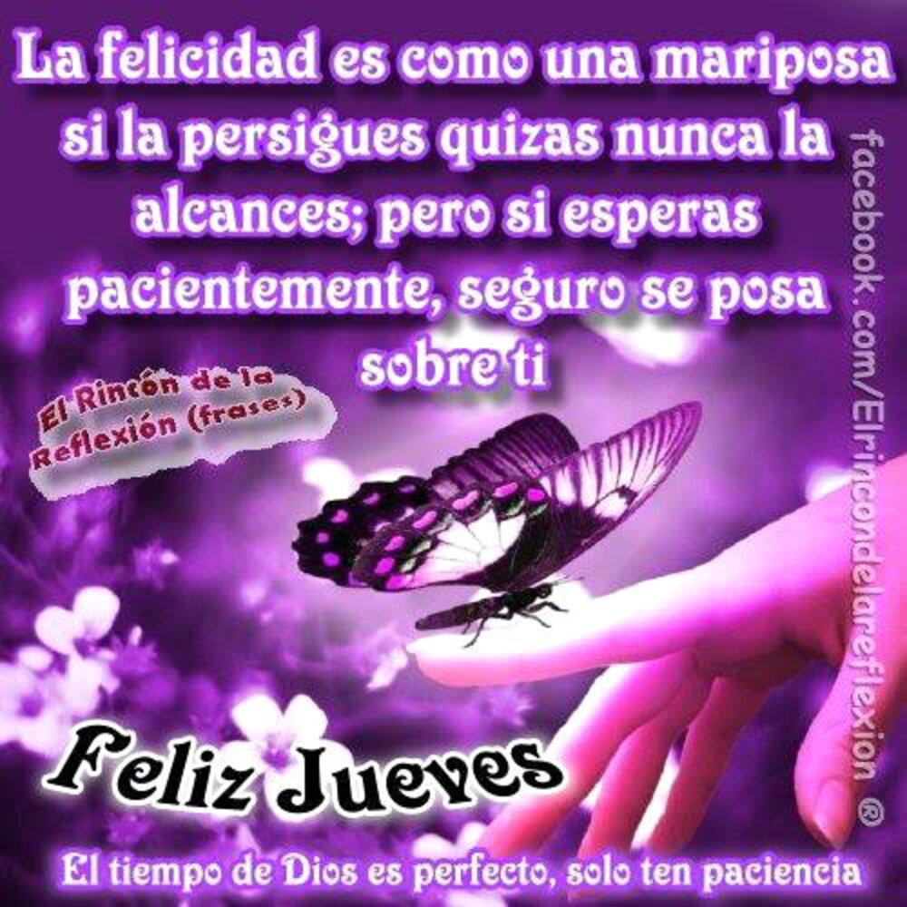 La felicidad es como una mariposa si la persigues quizás nuncala alcances; pero si esperas pacientemente, seguro se posa sobre ti! Feliz Jueves