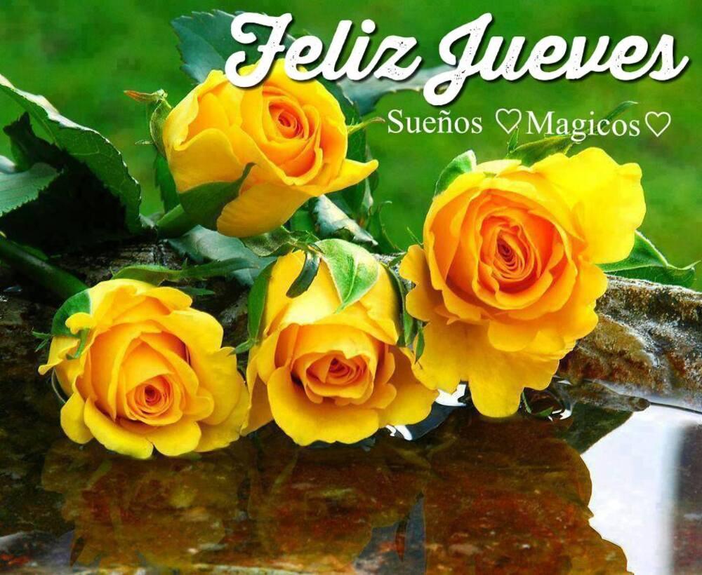 Feliz Jueves con flores
