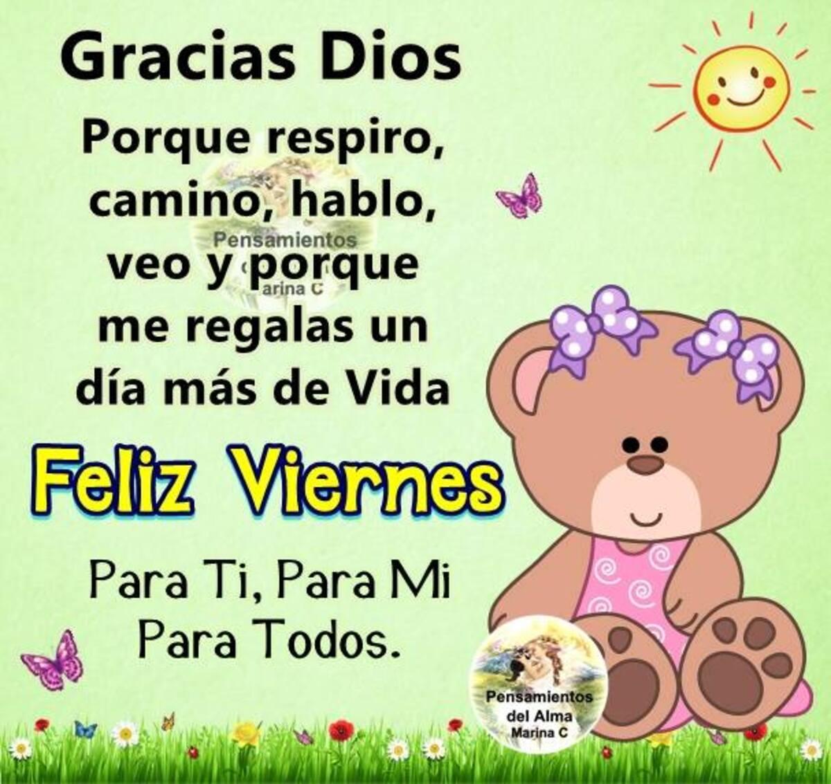 Gracias Dios porque respiro, camino, hablo, veo y porque me regalas un día más de vida. Feliz Viernes para ti, para mi, para todos.