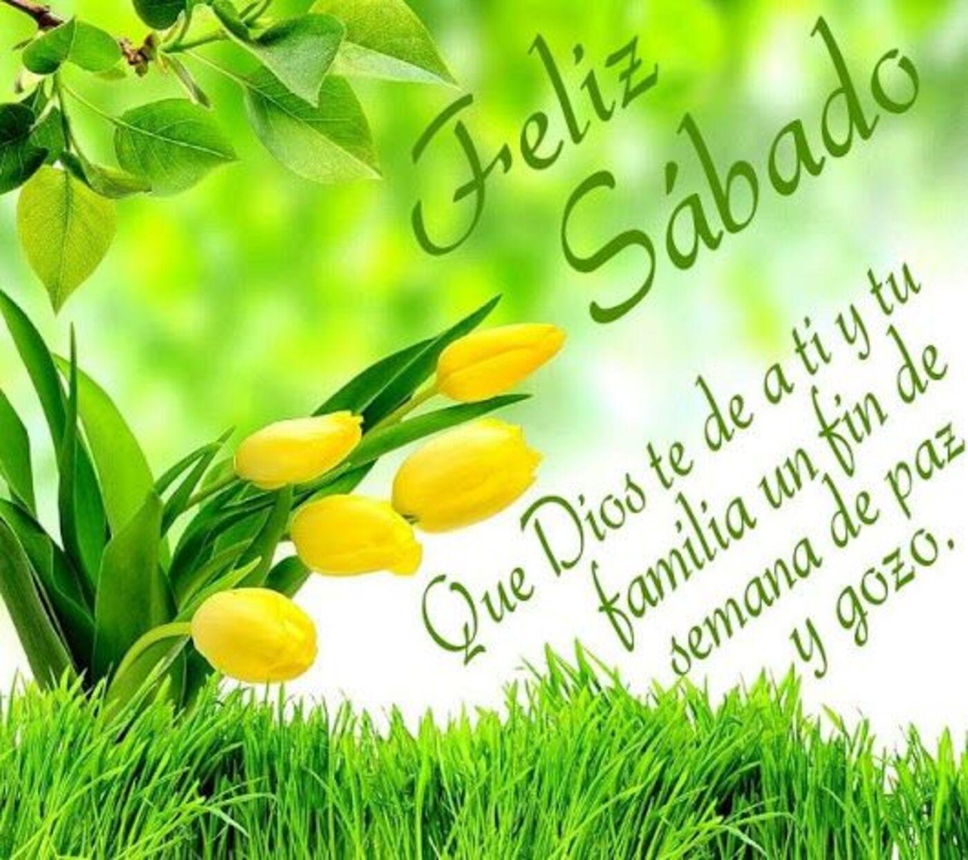 Feliz sábado que Dios te de a ti y tu familia un fin de semana de paz y gozo