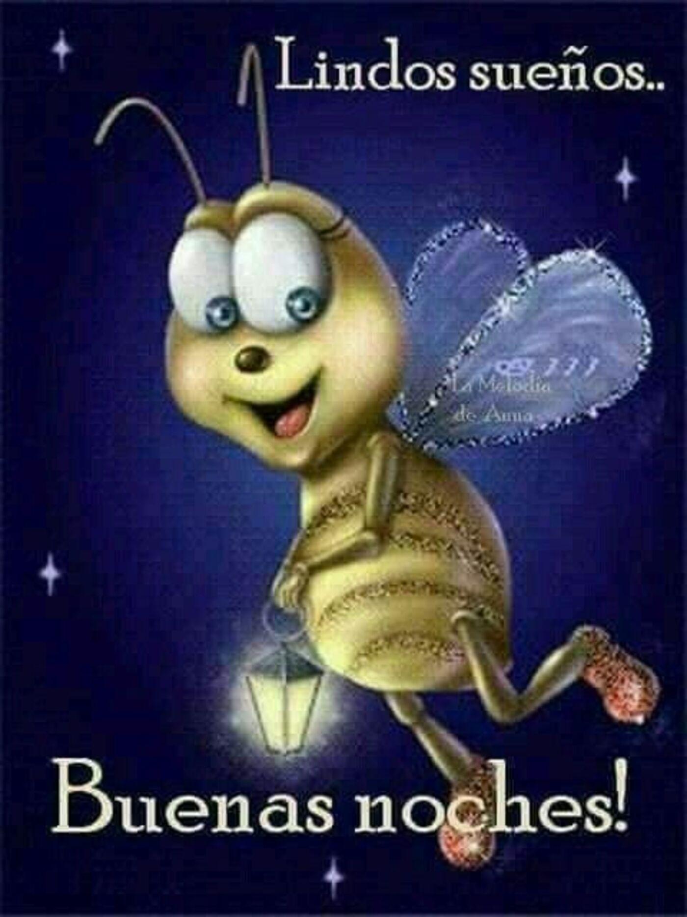 Lindos sueños...Buenas Noches!!