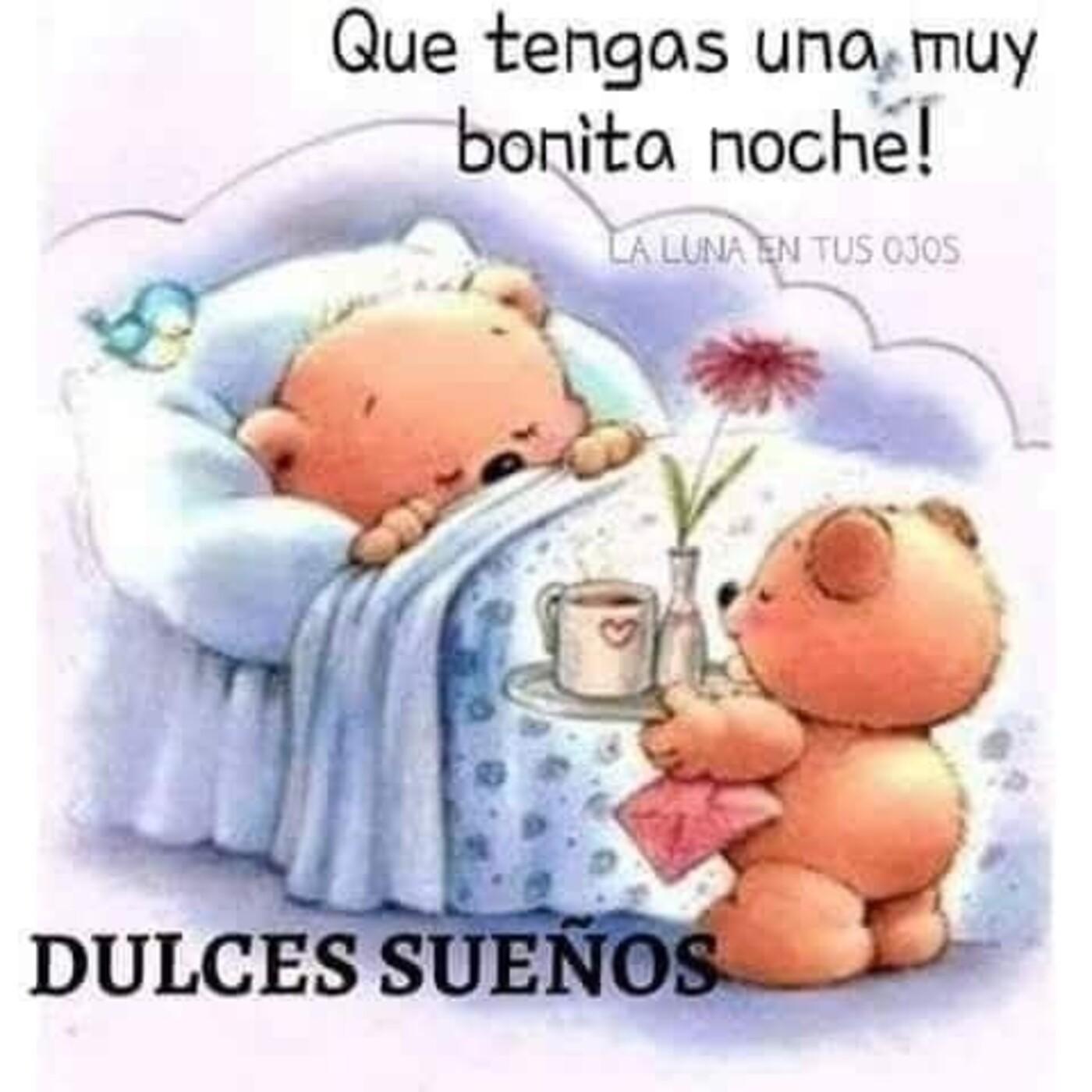 Que tengas una muy bonita noche...Dulces sueños!!