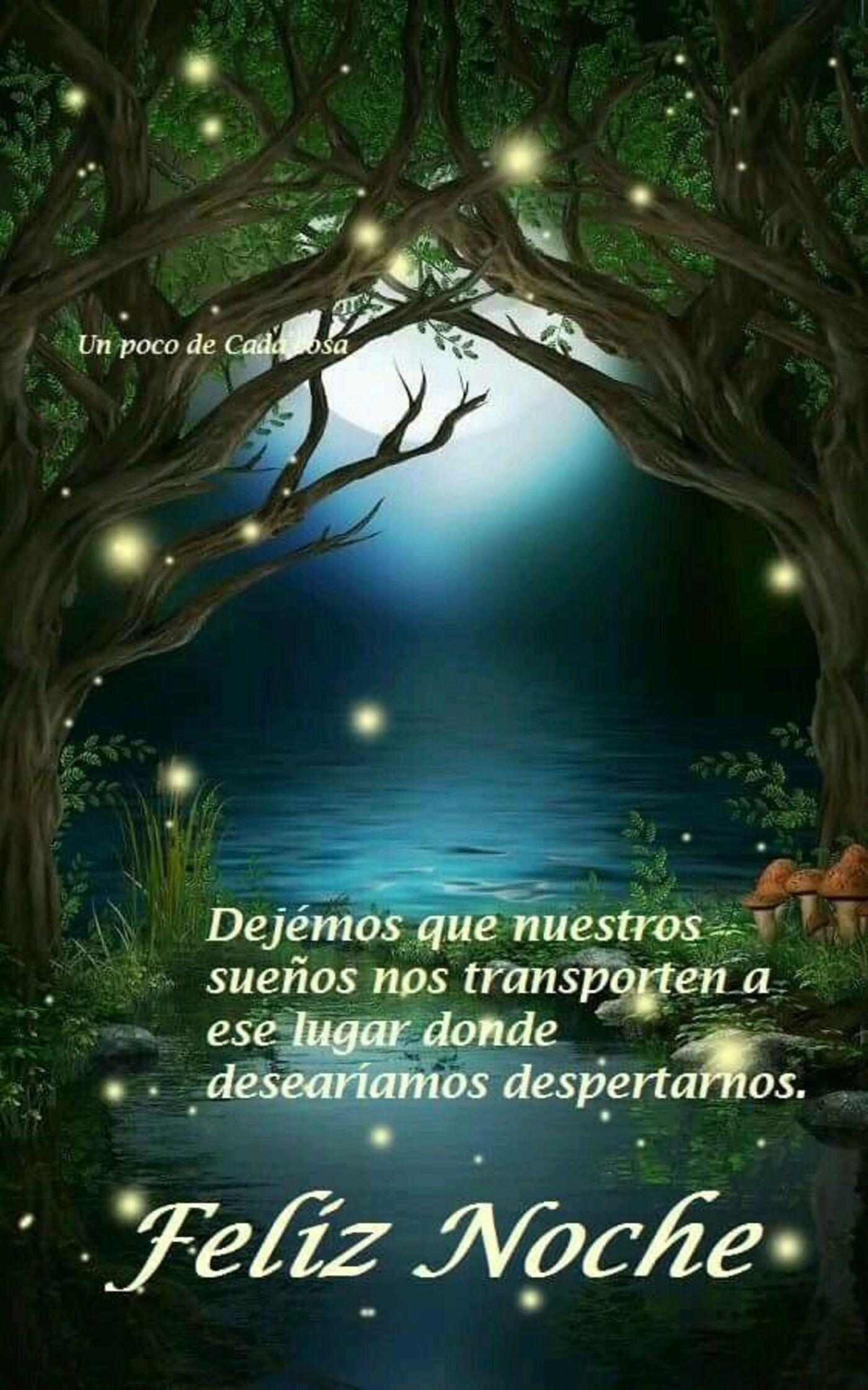 Dejemos que nuestros sueños no transporten a ese lugar donde desearíamos despertarnos...Feliz noche