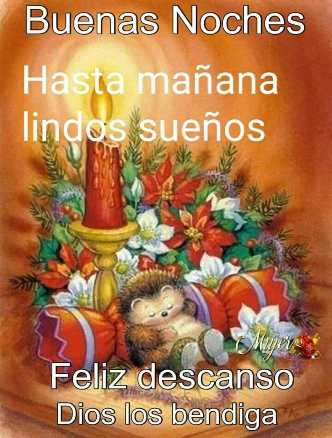 Buenas Noches hasta mañana, lindo sueños...feliz descanso Dios los bendiga