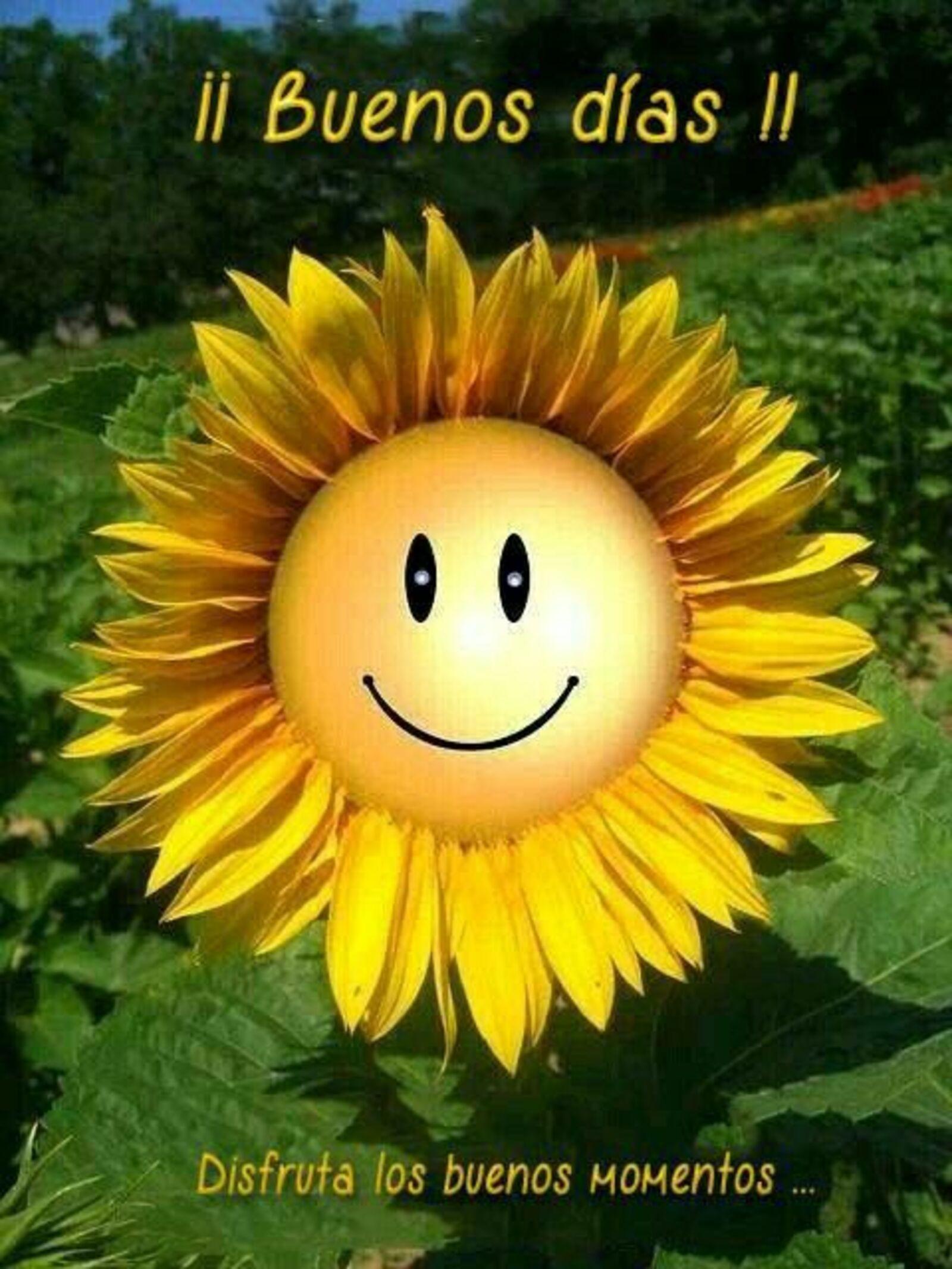 ¡¡ Buenos Días !! Disfruta los buenos momentos...