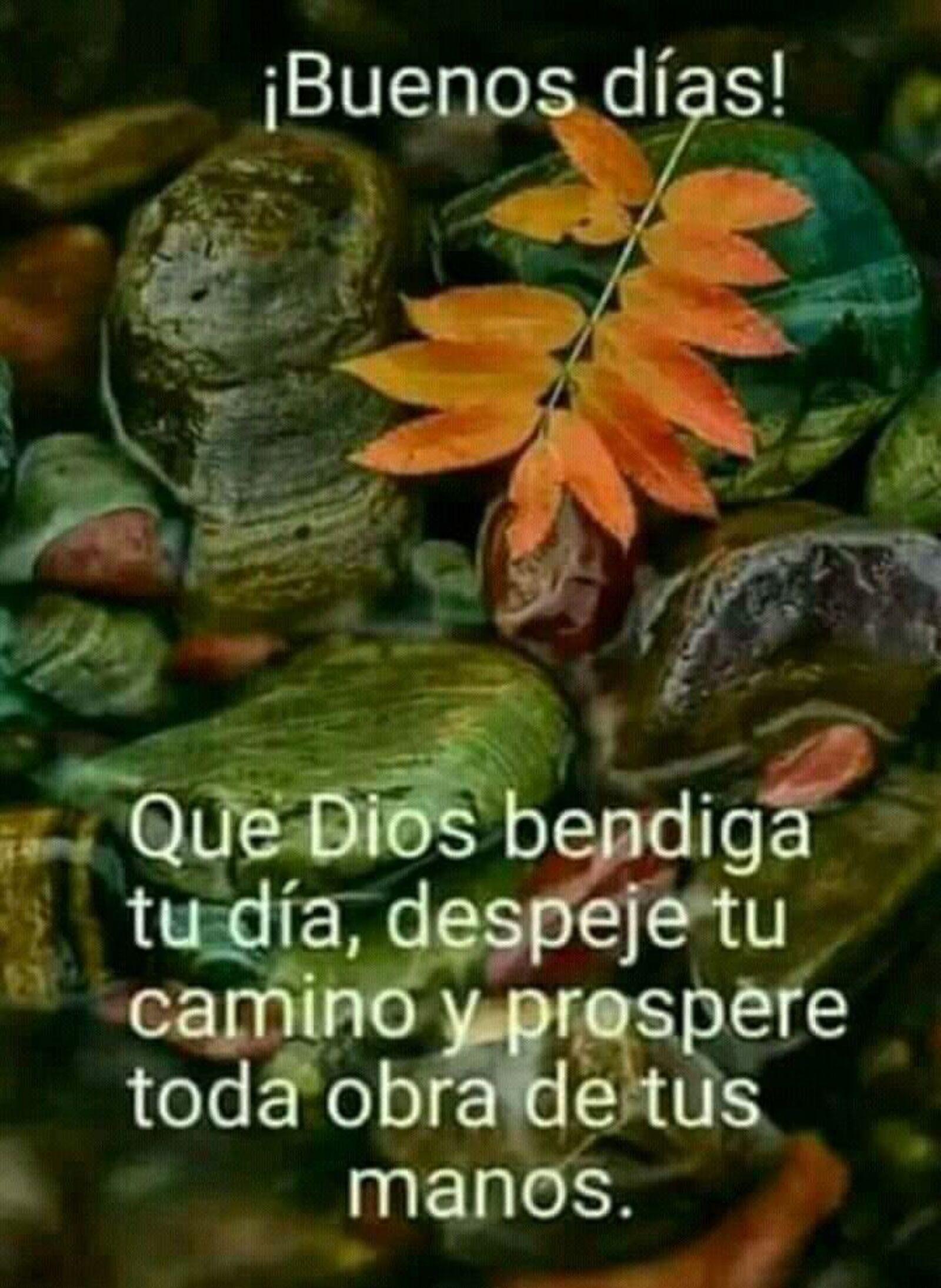 Buenos días que Dios bendiga tu día, despeje tu camino y prospere toda obra de tus manos