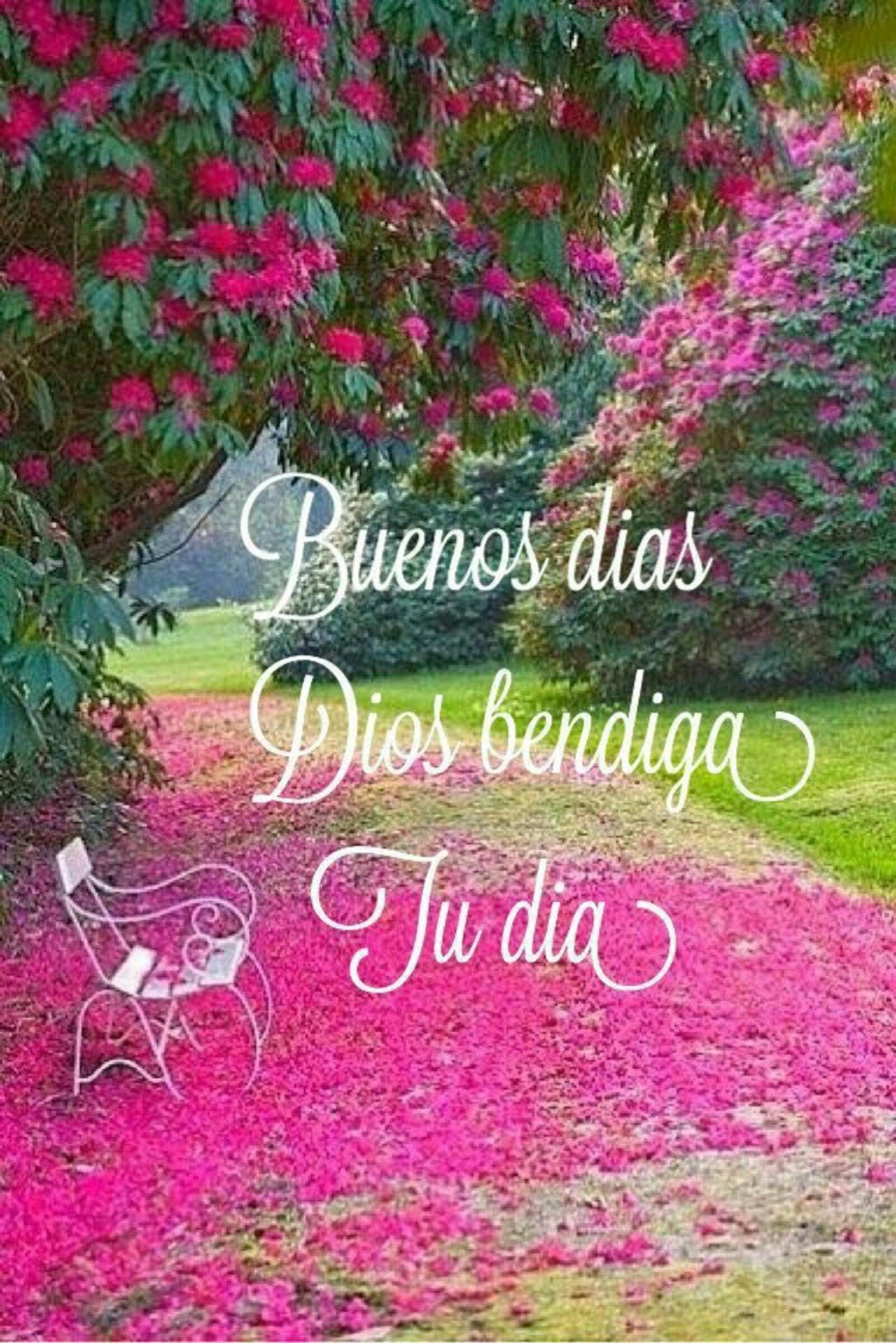 buenos dias Dios te bendiga tu dia