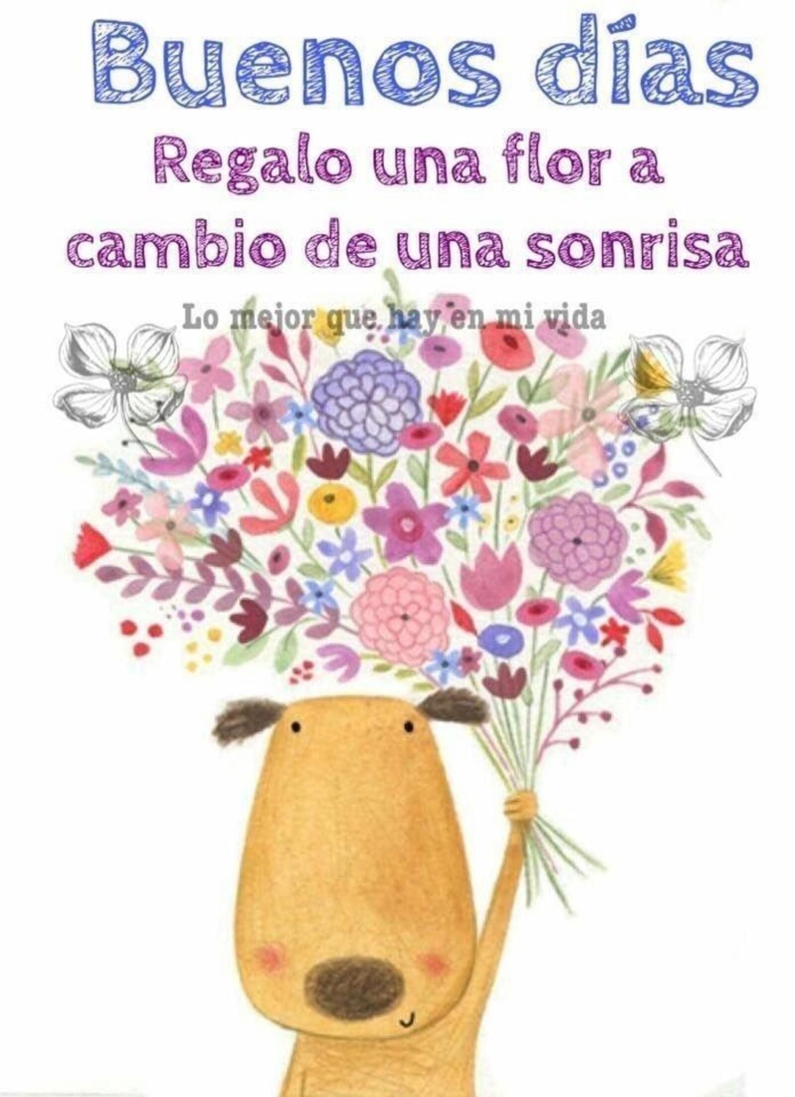 Buenos días regalo una flor a cambio de una sonrisa