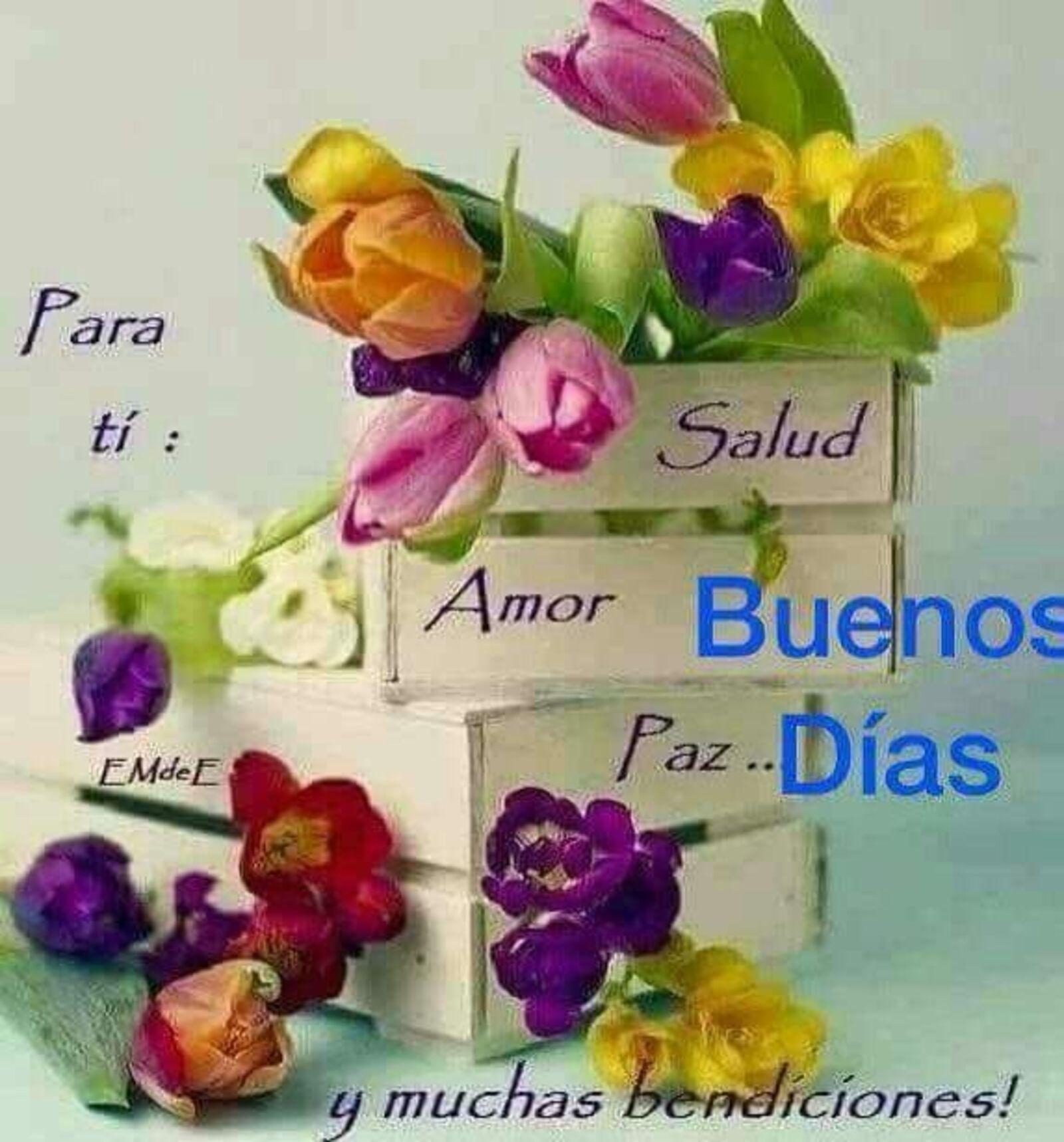 Para ti: Salud, Amor, Paz...Buenos días y muchos bendiciones