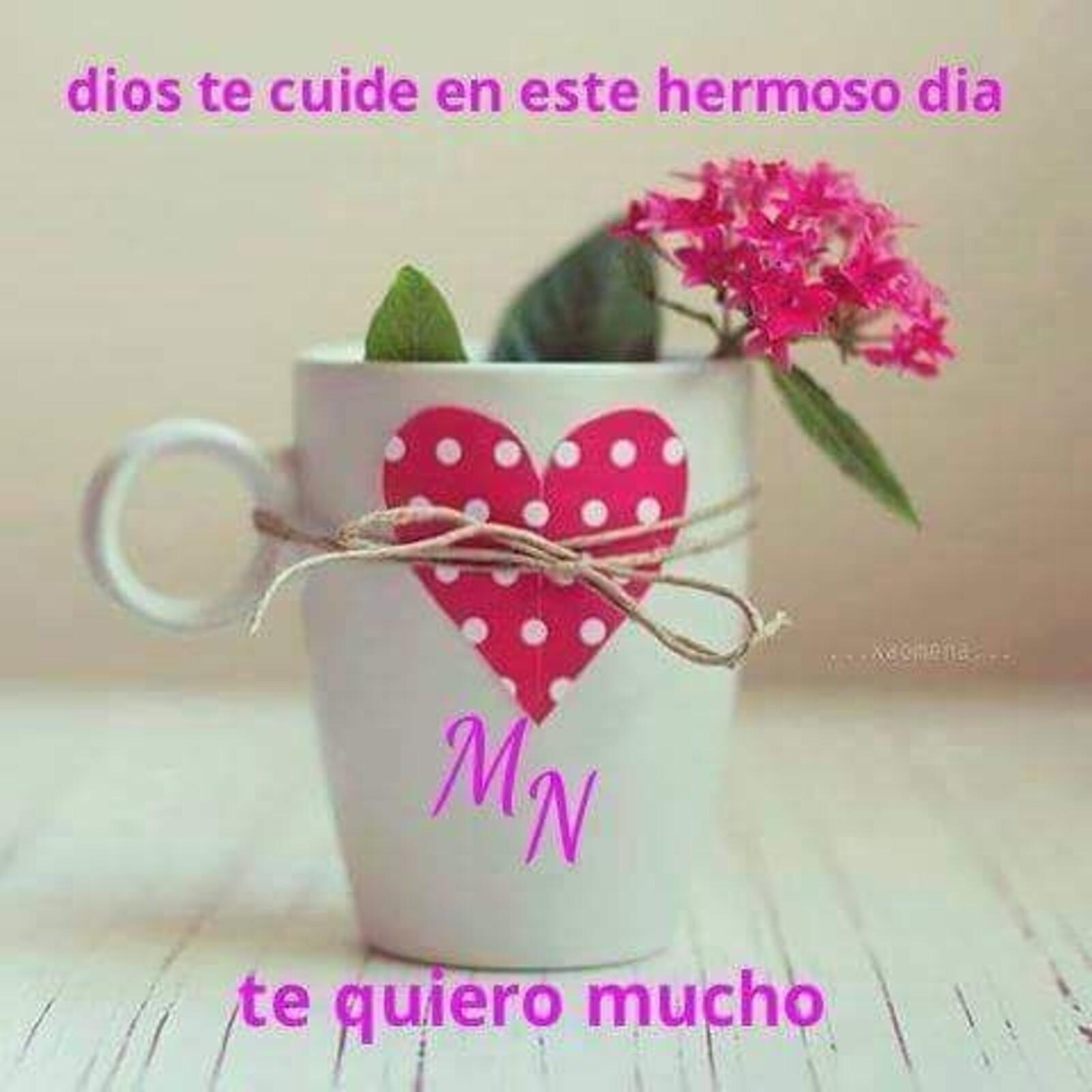 Dios te cuide en este hermoso día...te quiero mucho
