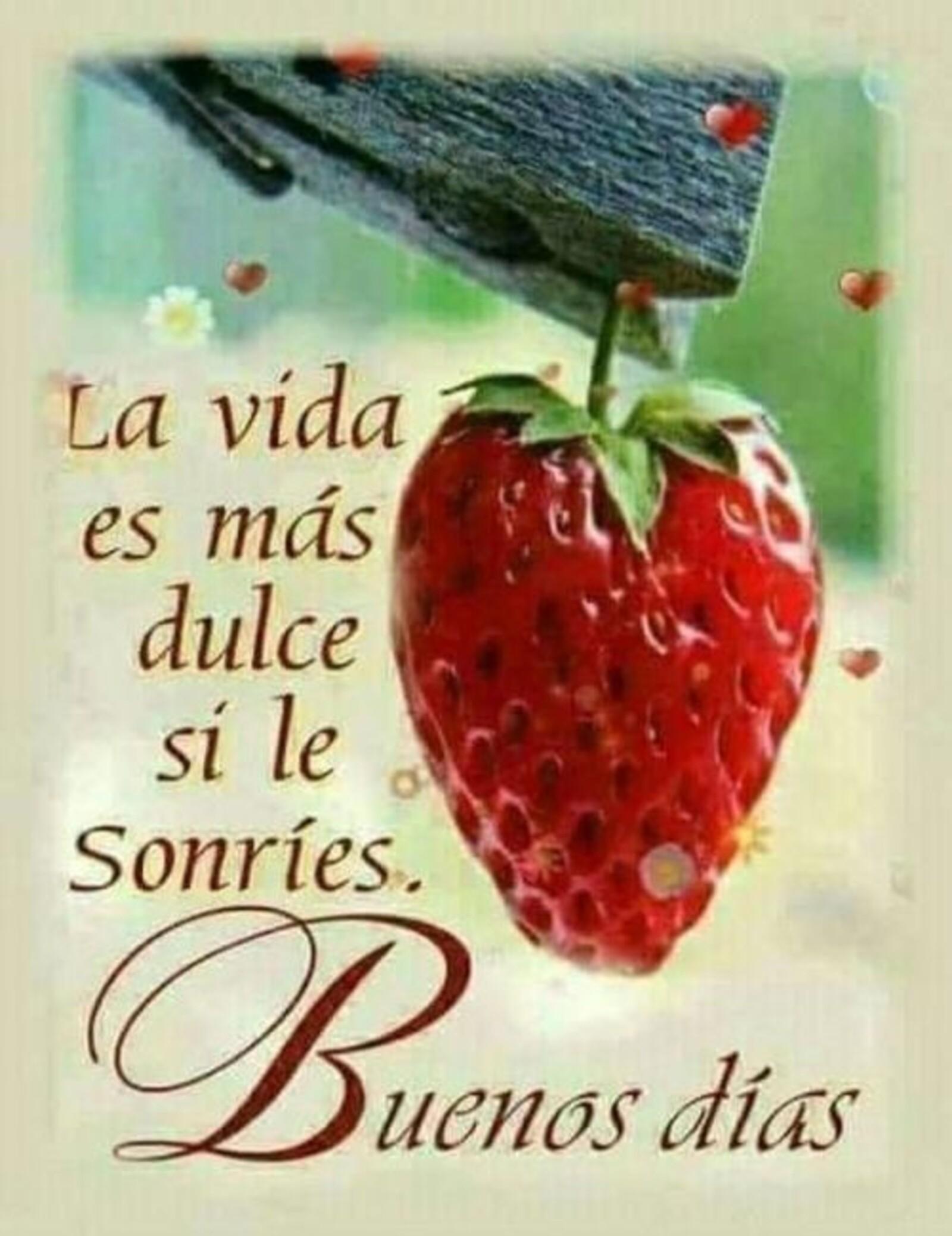 la vida es más dulce si le sonríes. Buenos días