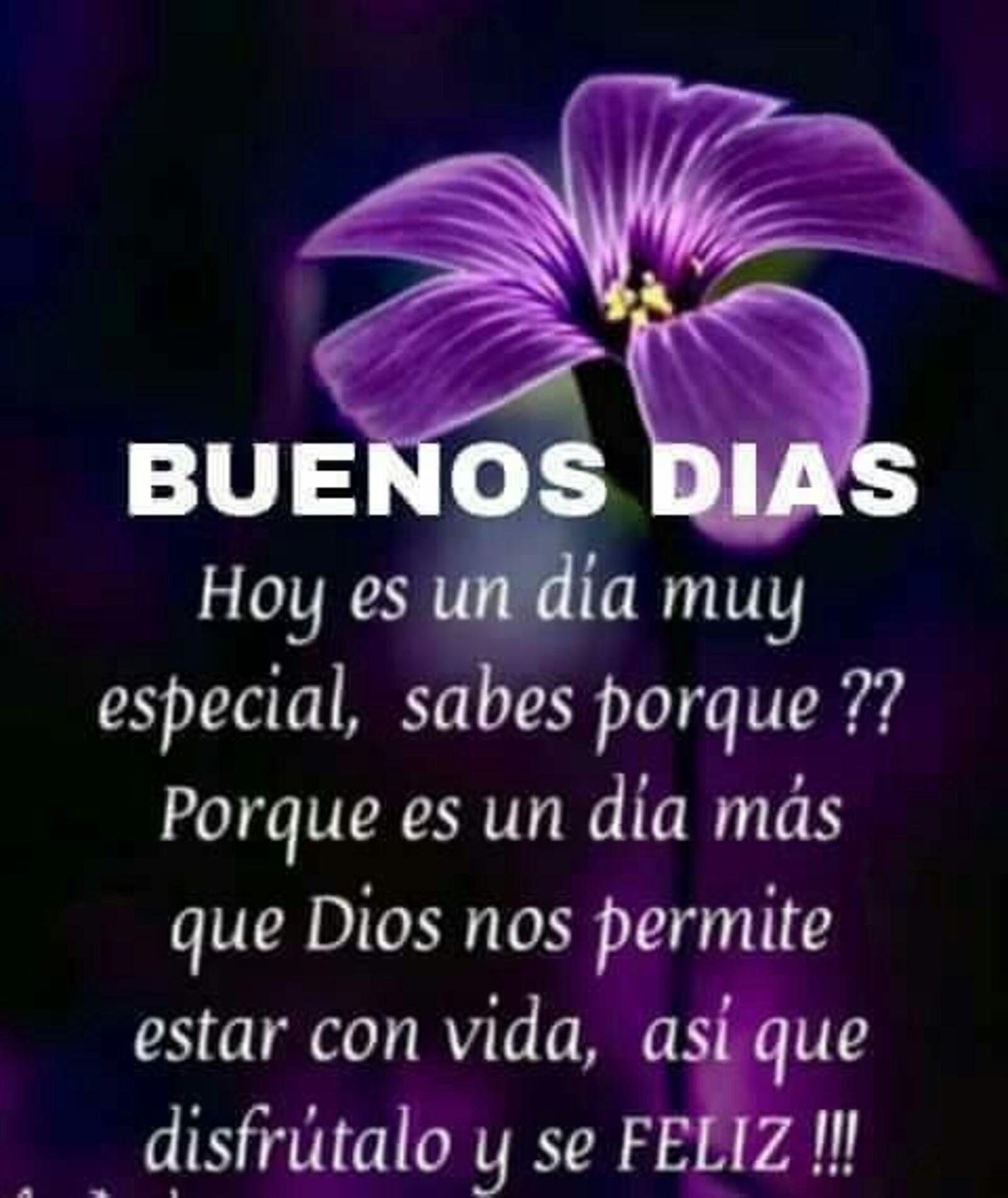 Buenos días hoy es un día muy especial, sabes porque?? Porque es un día más que Dios nos permite estar con vida, así que disfrutalo y se feliz!!!