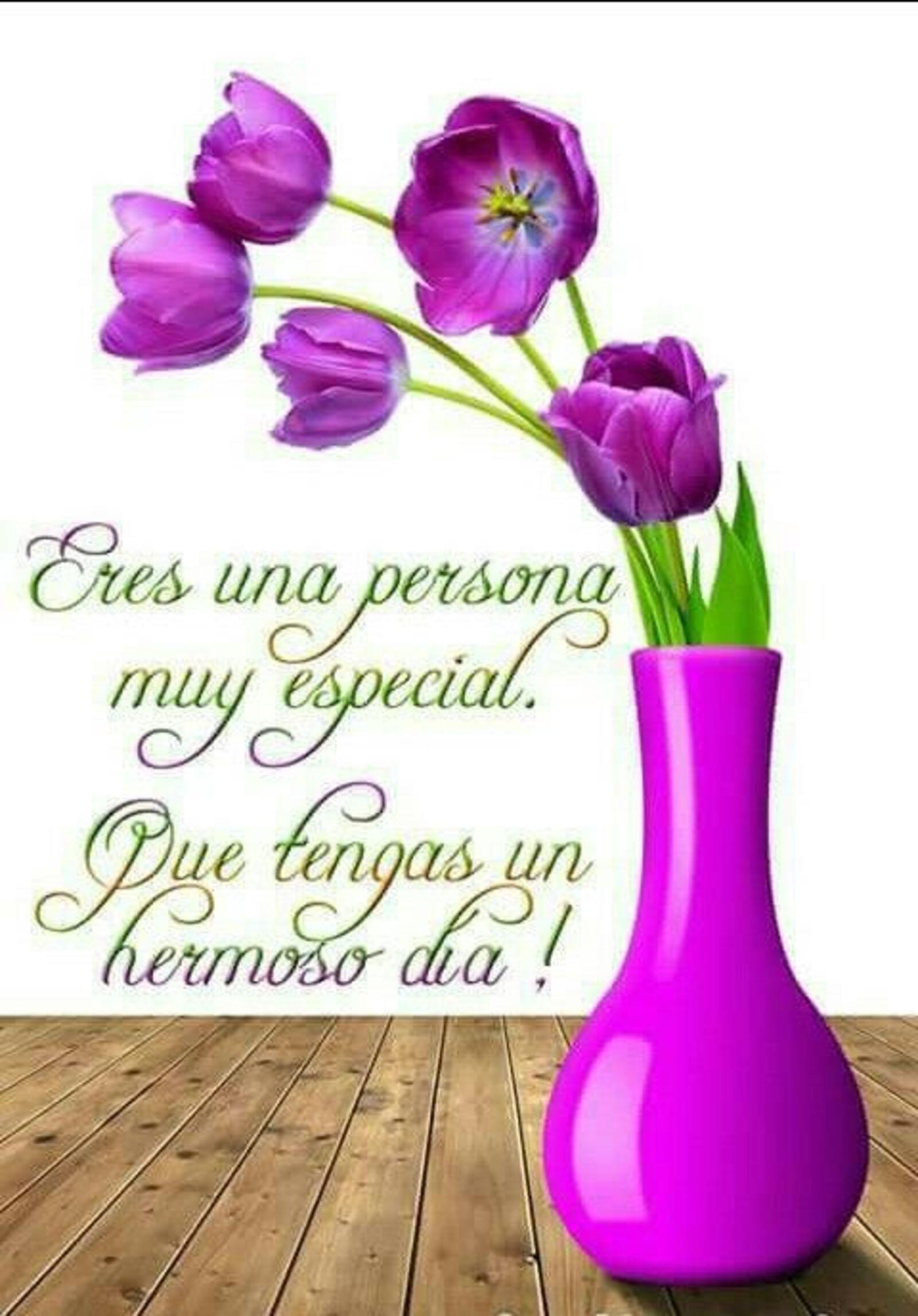 Eres una persona muy especial. Que tengas un hermoso día