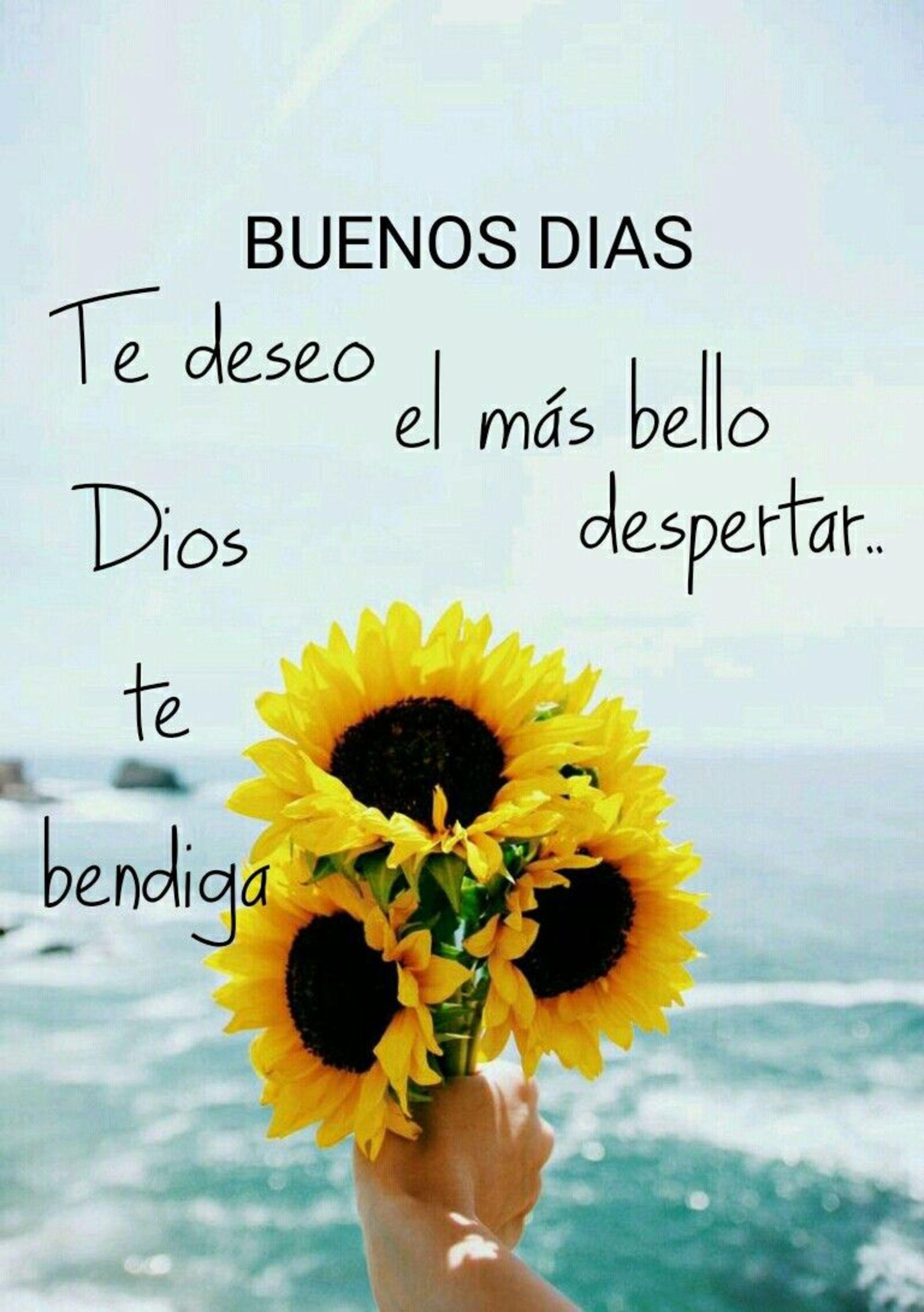 Buenos días te deseo el mas bello despertar...Dios te bendiga