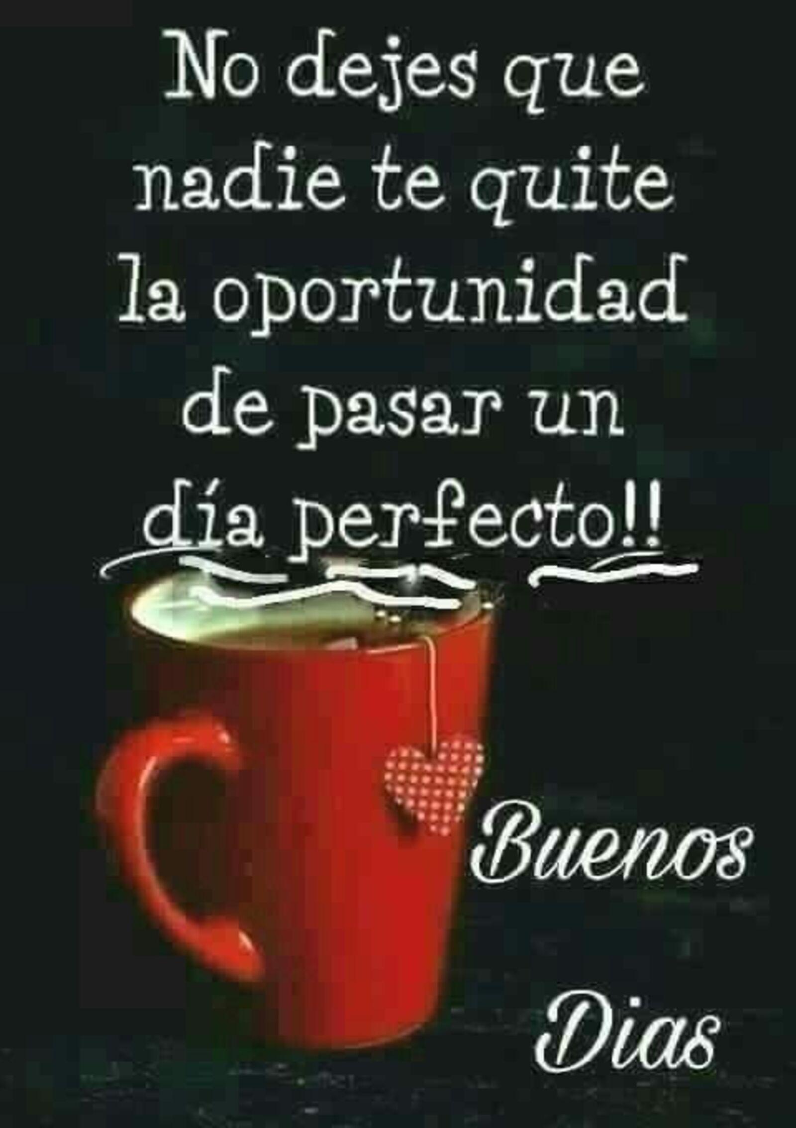 No dejes que nadie te quite la oportunidad de pasar un día perfecto!! Buenos días
