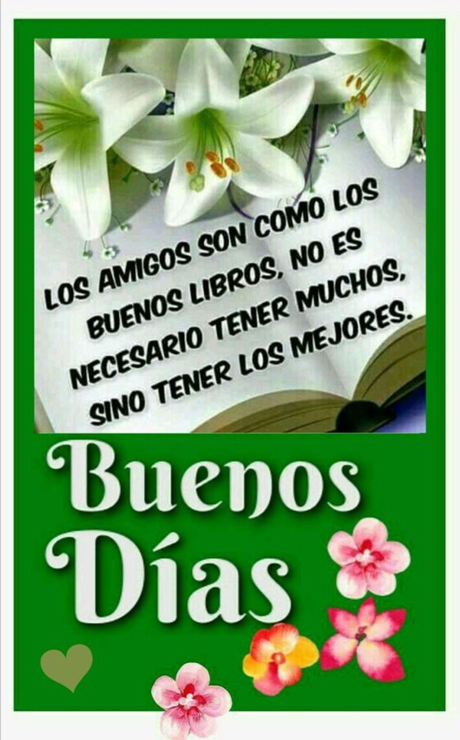 Los amigos son como los buenos libros, no es necesario tener muchos, sino tener los mejores. Buenos días
