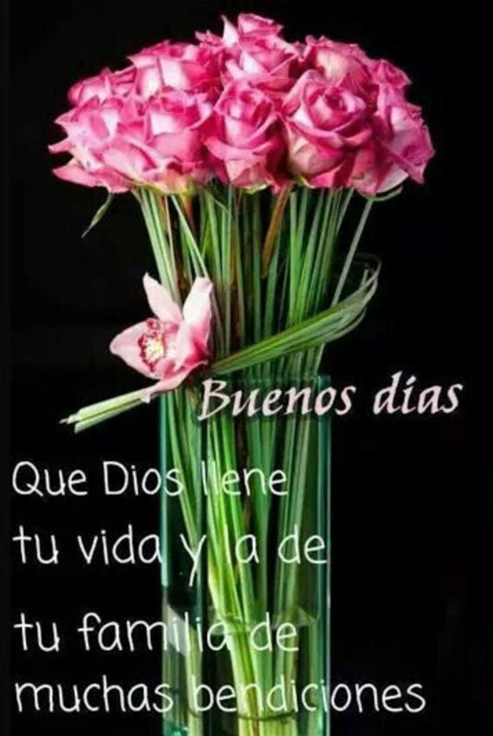 Buenos días que Dios llene tu vida y a de tu familia de muchas bendiciones