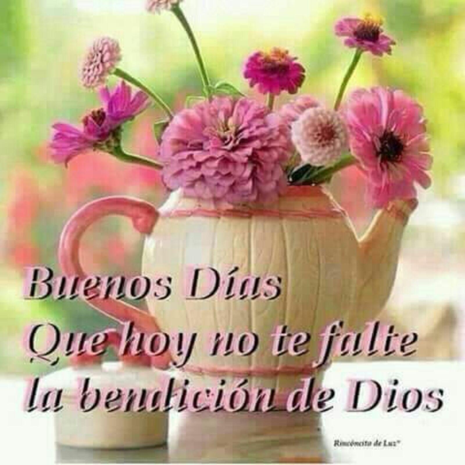 Buenos días que hoy no te falte la bendicion de Dios