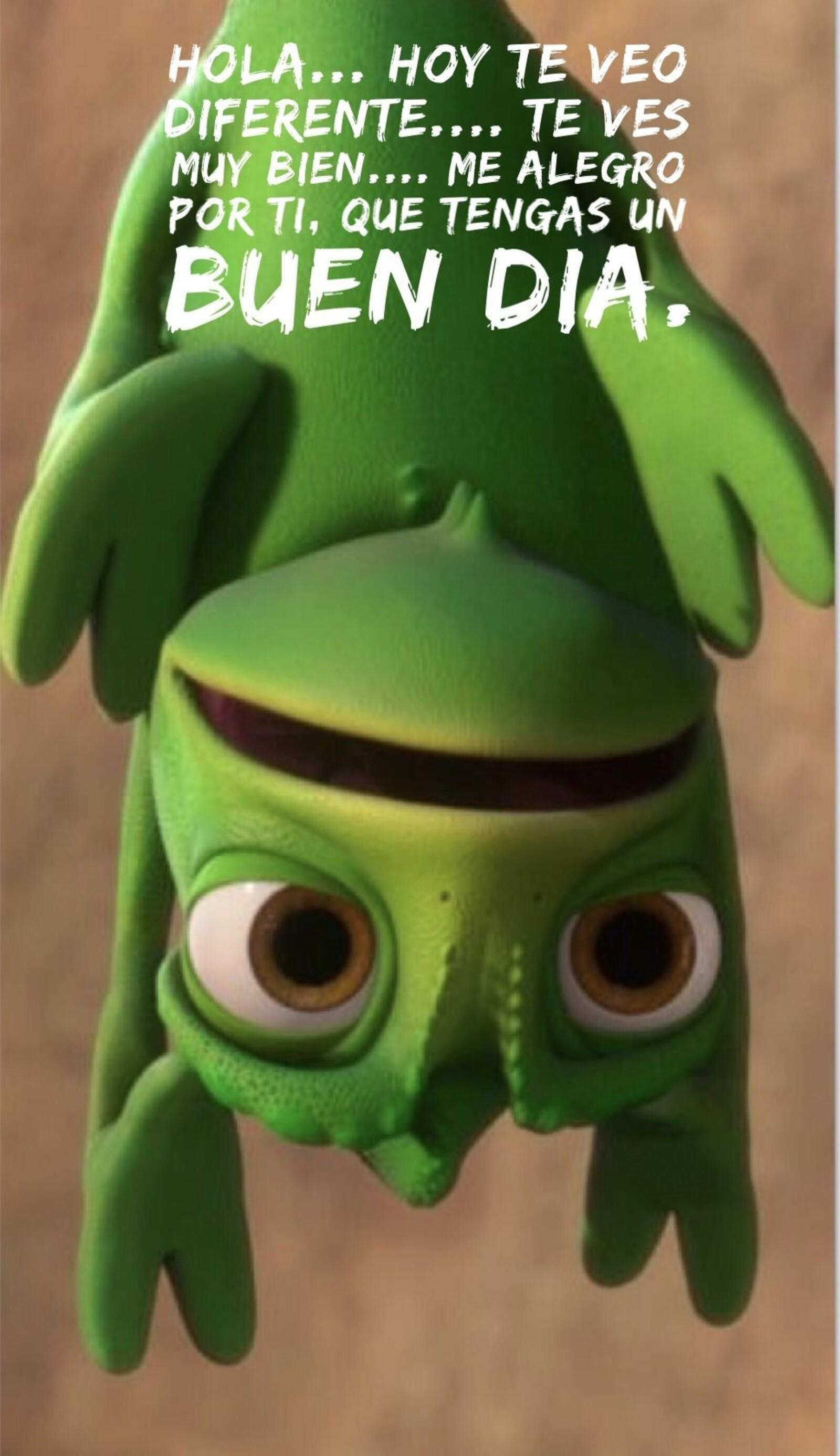 Hola... hoy te veo diferente...te ves muy bien...me alegro por ti, que tengas un buen día