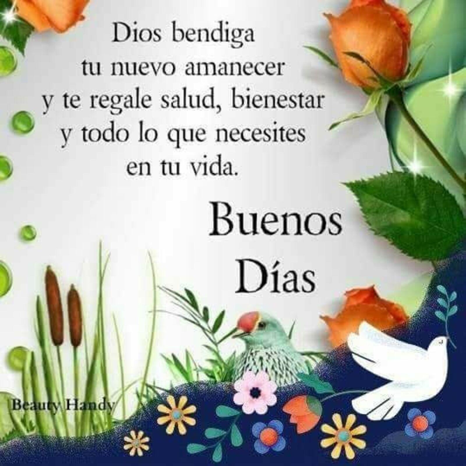 Dios te bendiga tu nuevo amanecer y te regale salud, bienestar y todo lo necesiten en tu vida. Buenos días