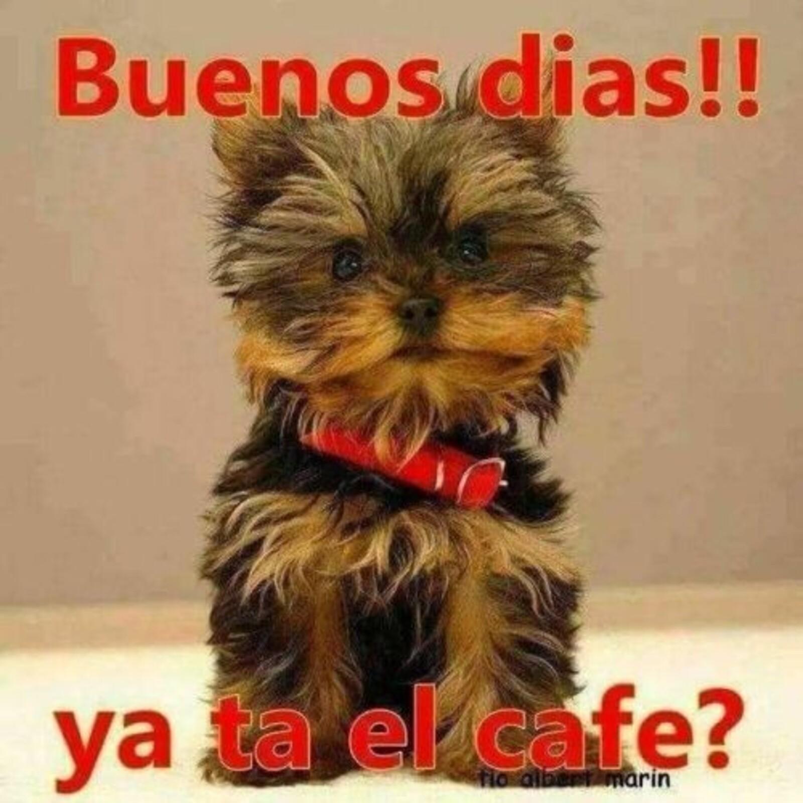Buenos días!! ya ta el café?